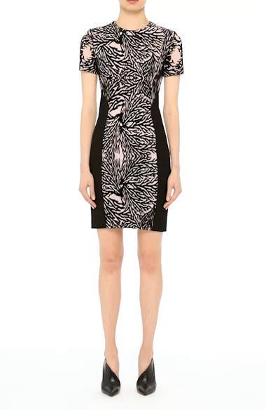 Burnout Coral Sheath Dress, video thumbnail