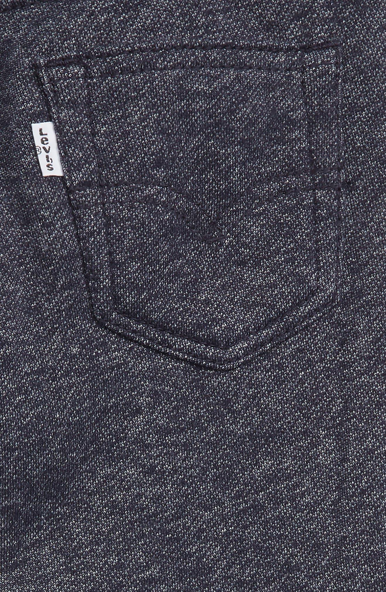 Knit Jogger Pants,                             Alternate thumbnail 3, color,                             410
