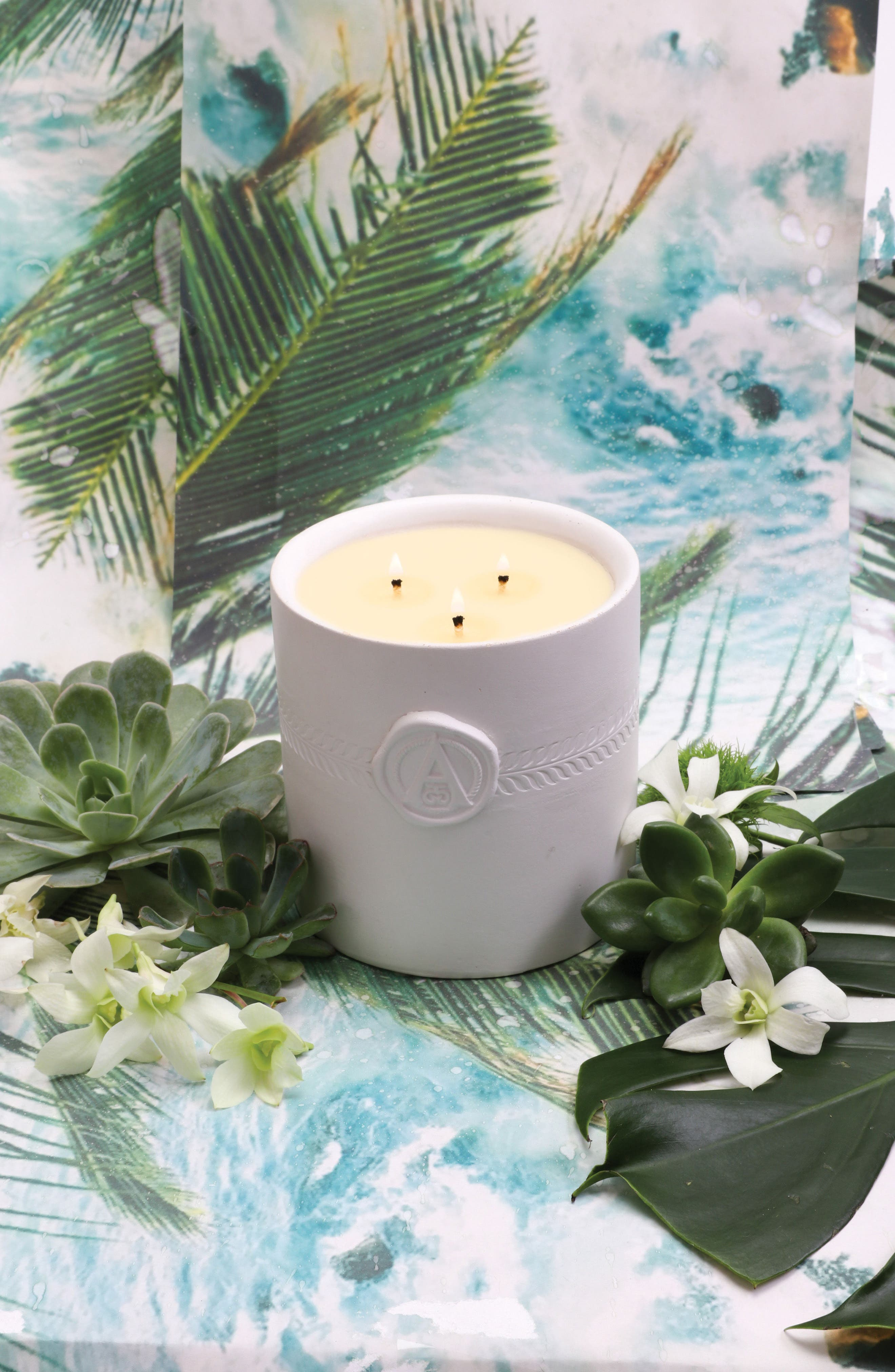 Palm Three-Wick Candle,                             Alternate thumbnail 5, color,                             000