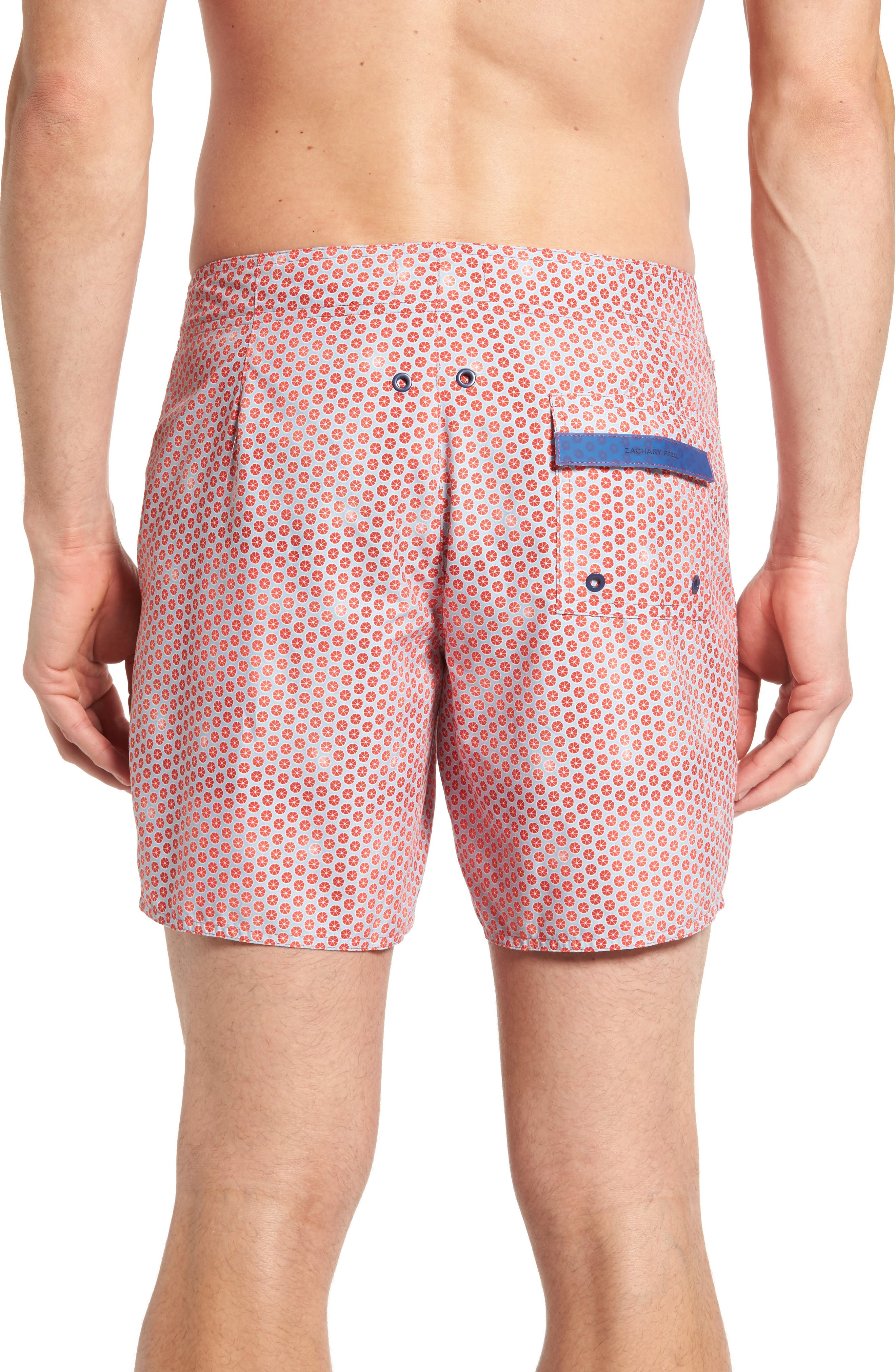 Torreya Swim Trunks,                             Alternate thumbnail 4, color,