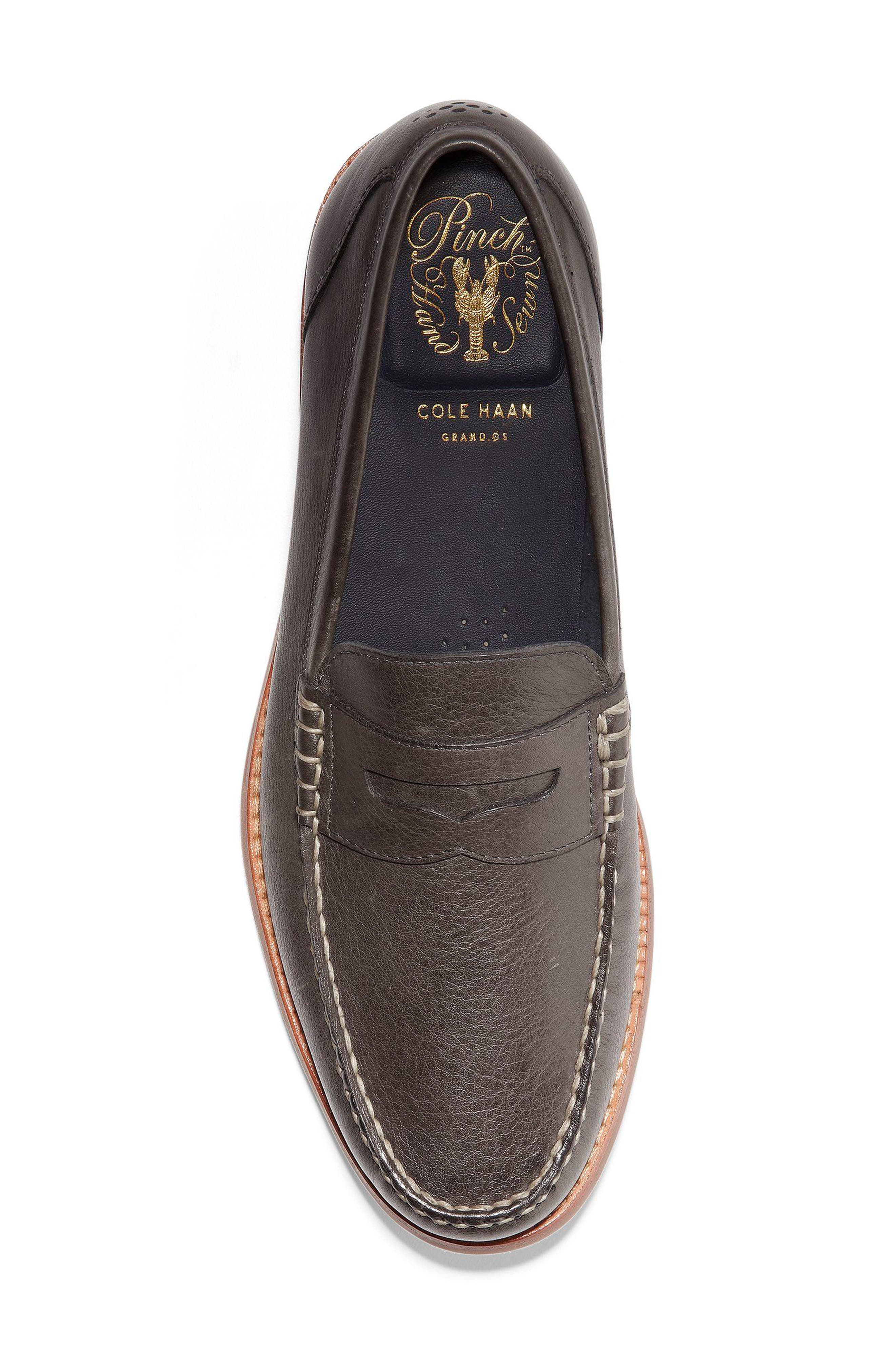 'Pinch Grand' Penny Loafer,                             Alternate thumbnail 5, color,                             021