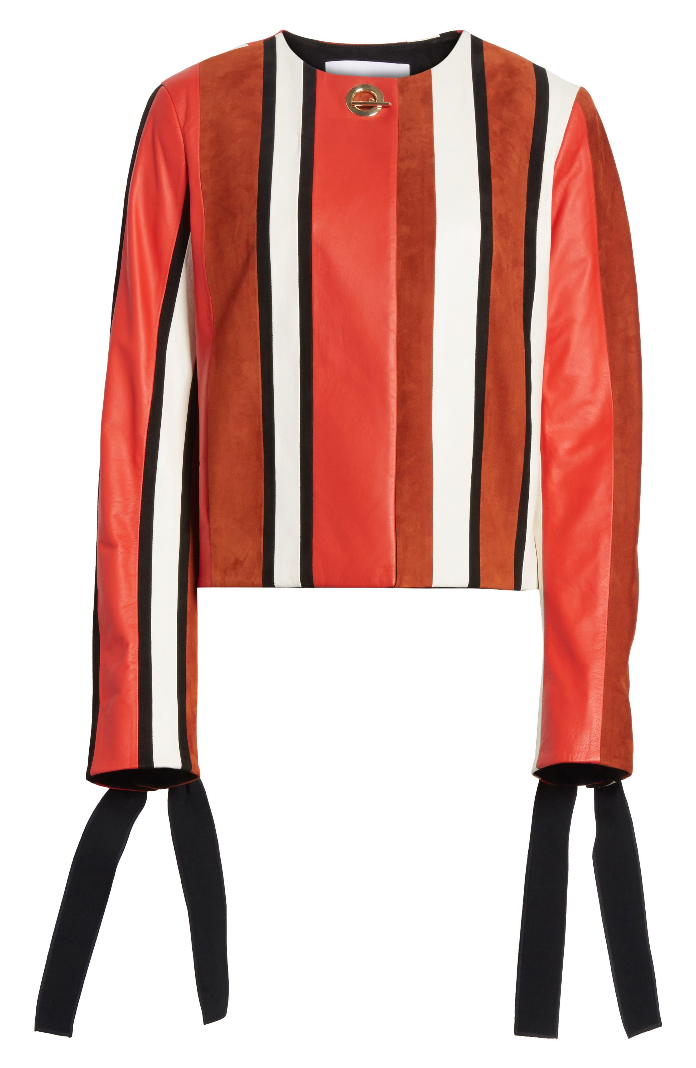 Stripe Collarless Leather Jacket,                             Alternate thumbnail 5, color,                             621