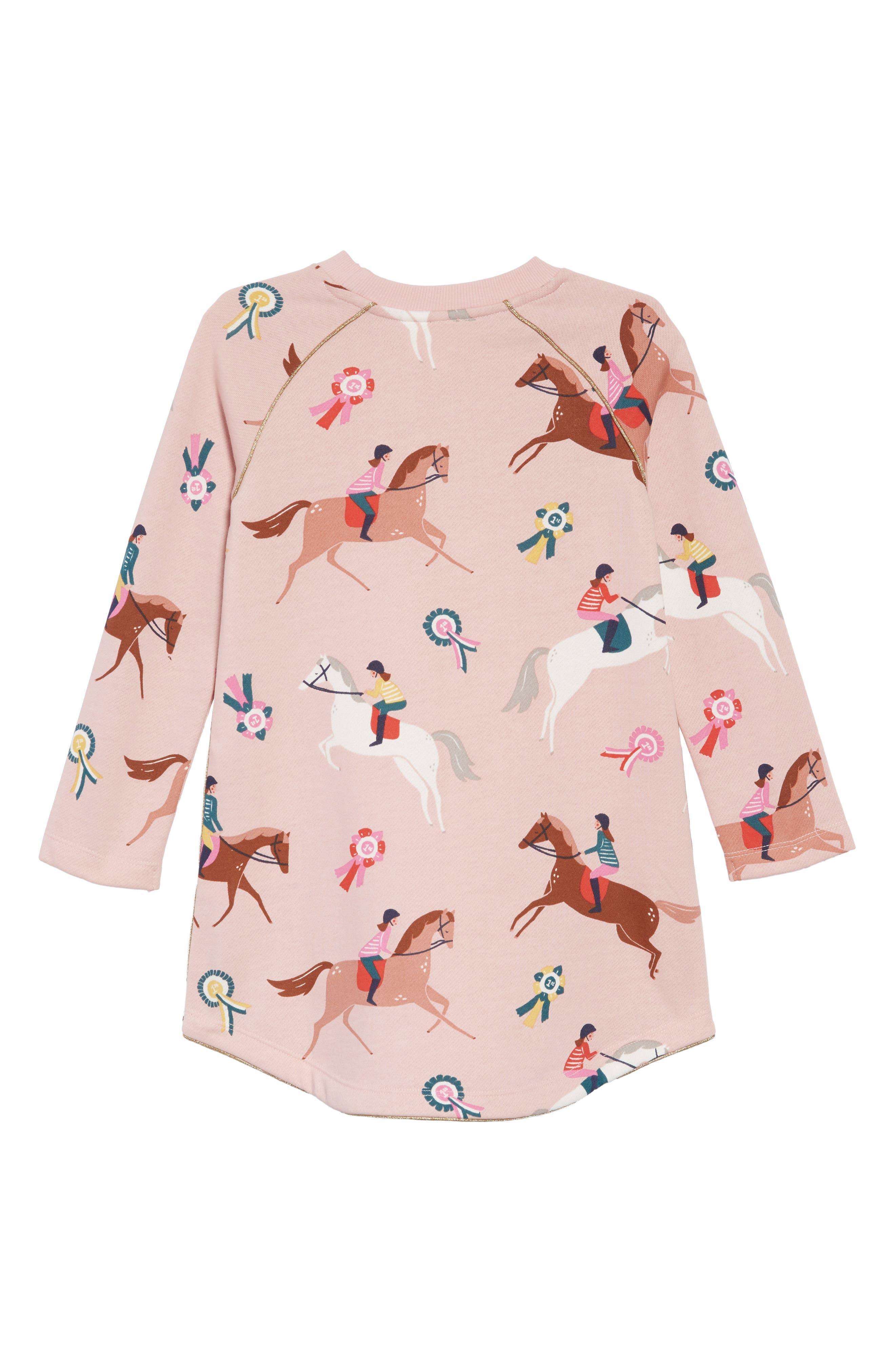 Cozy Sweatshirt Dress,                             Alternate thumbnail 2, color,                             684