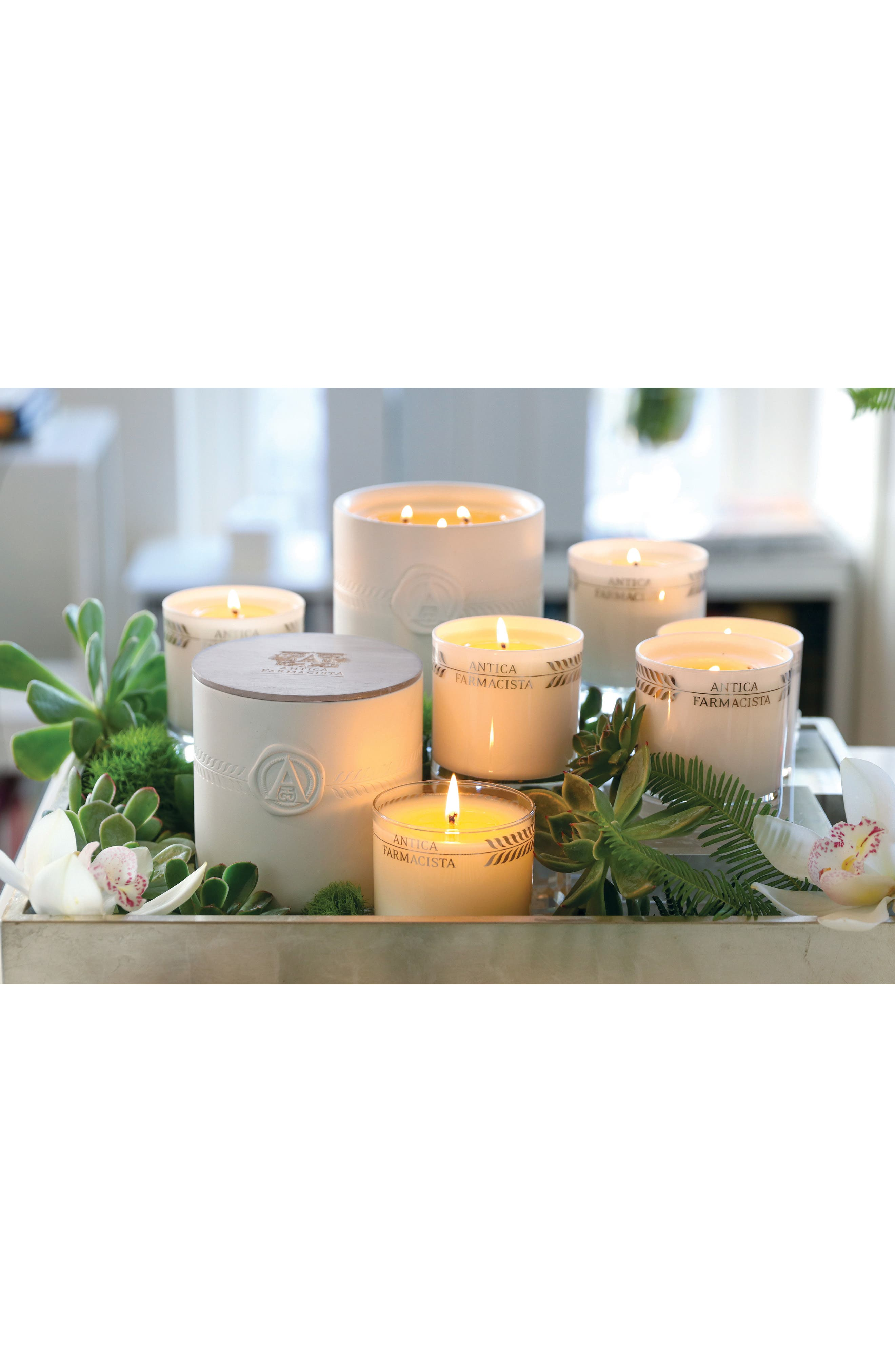 Palm Three-Wick Candle,                             Alternate thumbnail 4, color,                             000