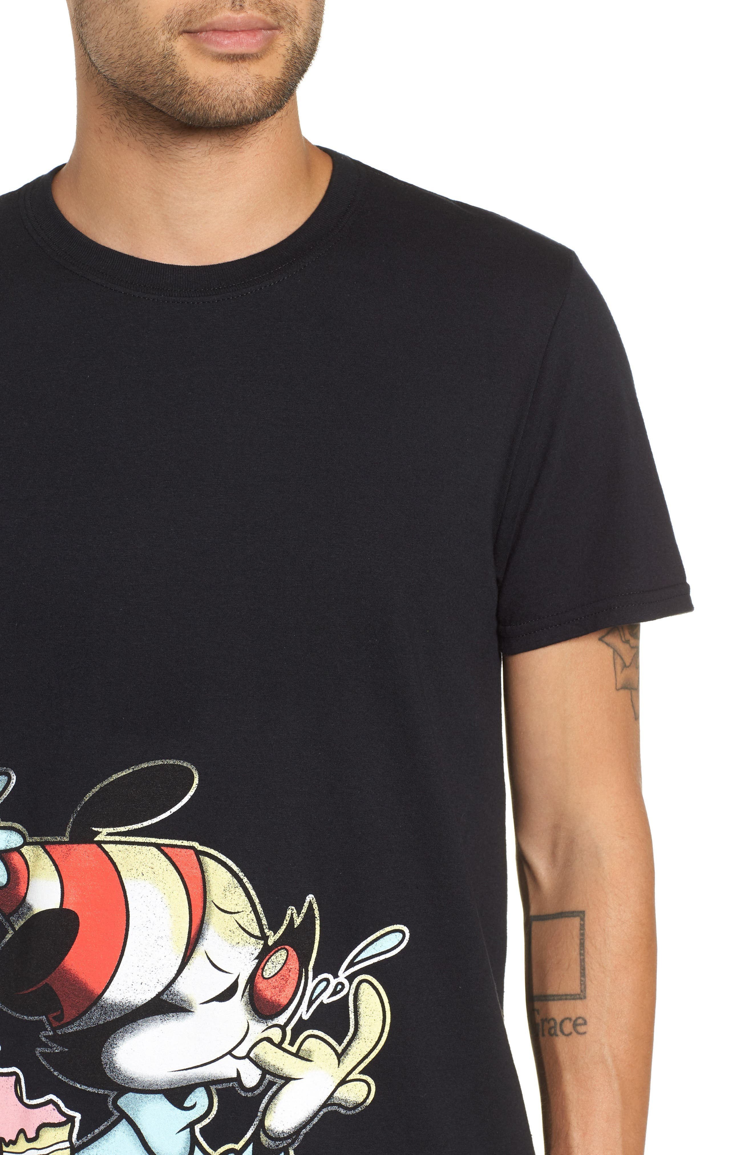 Animaniacs Cake Graphic T-Shirt,                             Alternate thumbnail 4, color,                             001