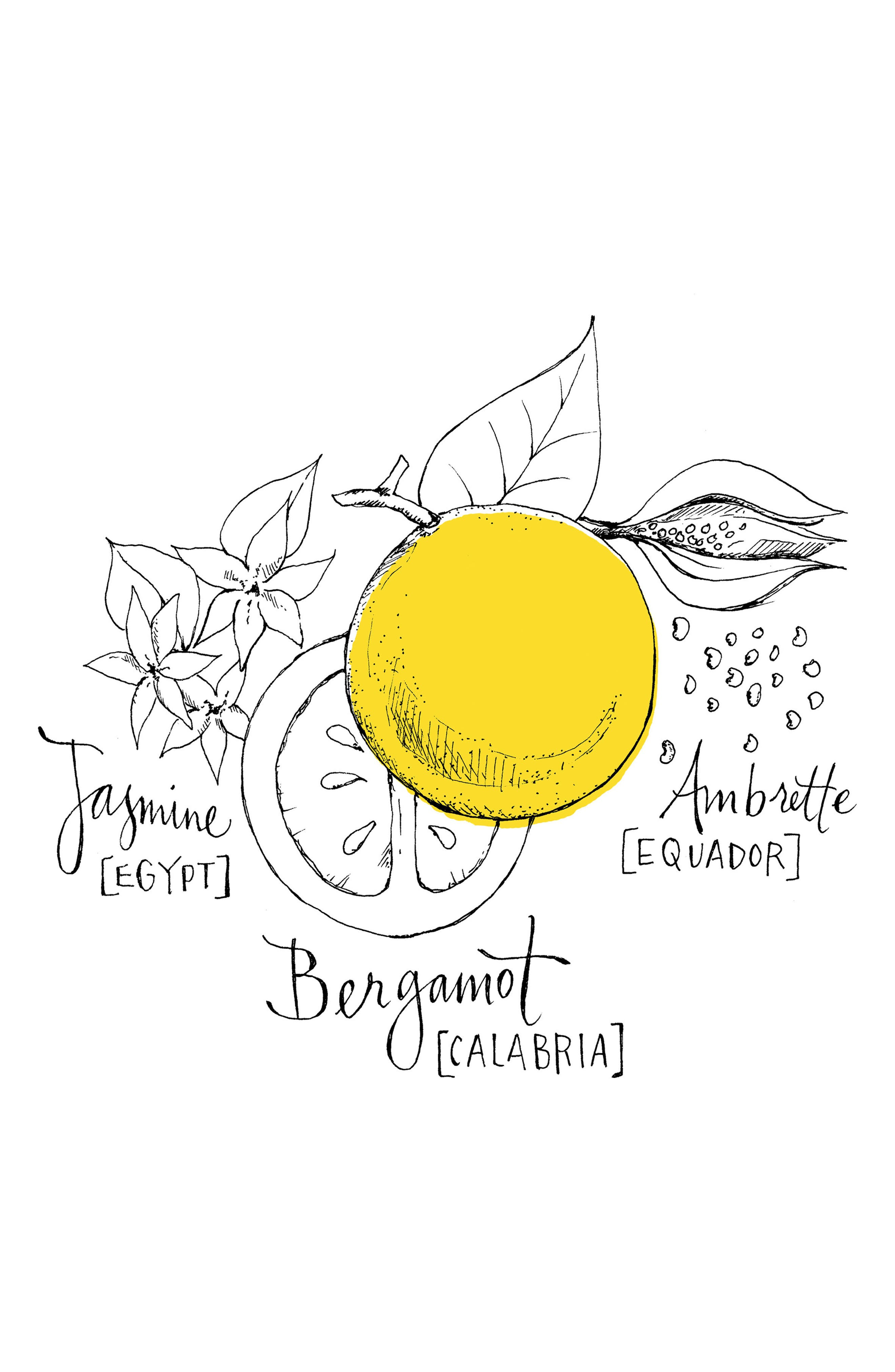Bergamote Soleil Cologne Absolue,                             Alternate thumbnail 3, color,                             NO COLOR