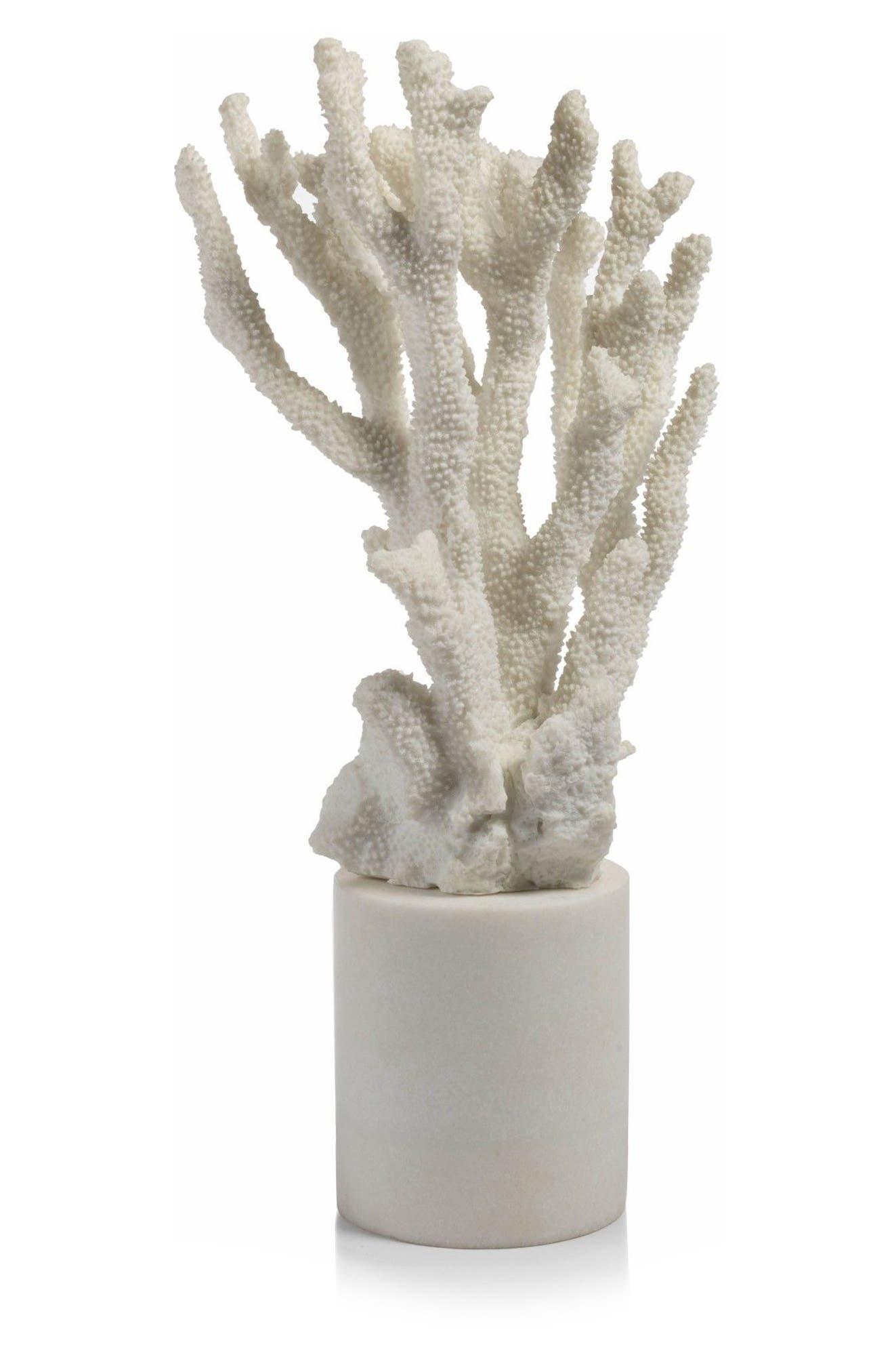Morgana Cylinder Base Coral Sculpture,                             Main thumbnail 1, color,                             100