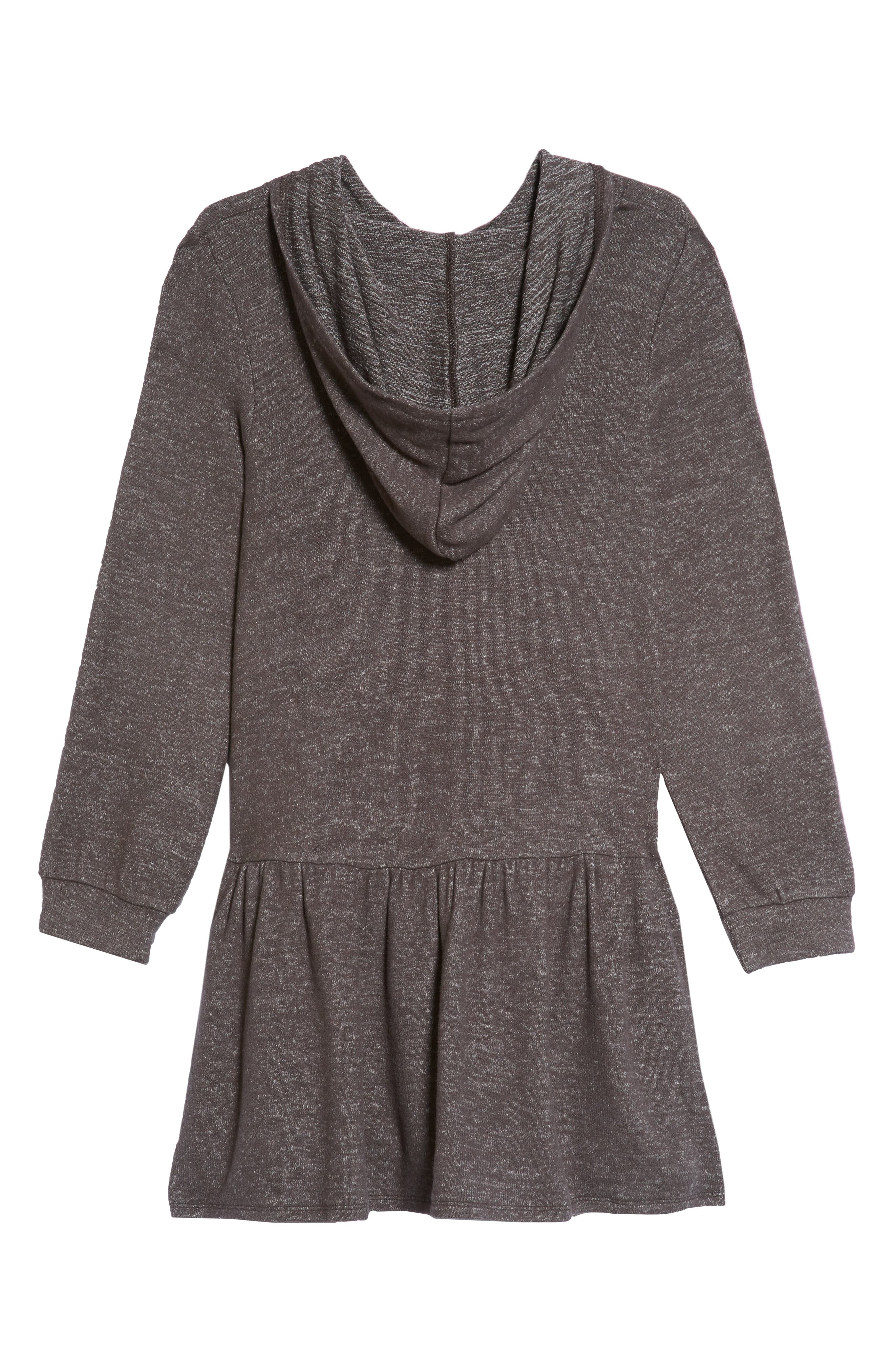 Cozy Hooded Dress,                             Alternate thumbnail 2, color,                             021