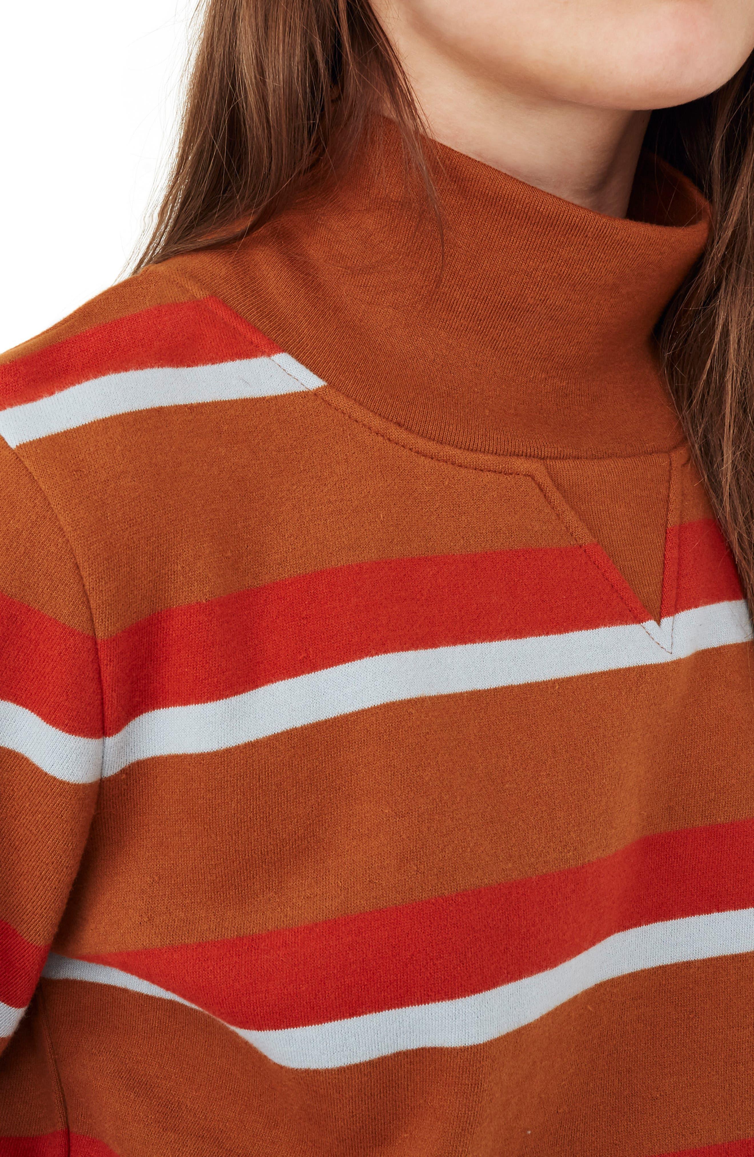Stripe Turtleneck Sweatshirt,                             Alternate thumbnail 3, color,                             201