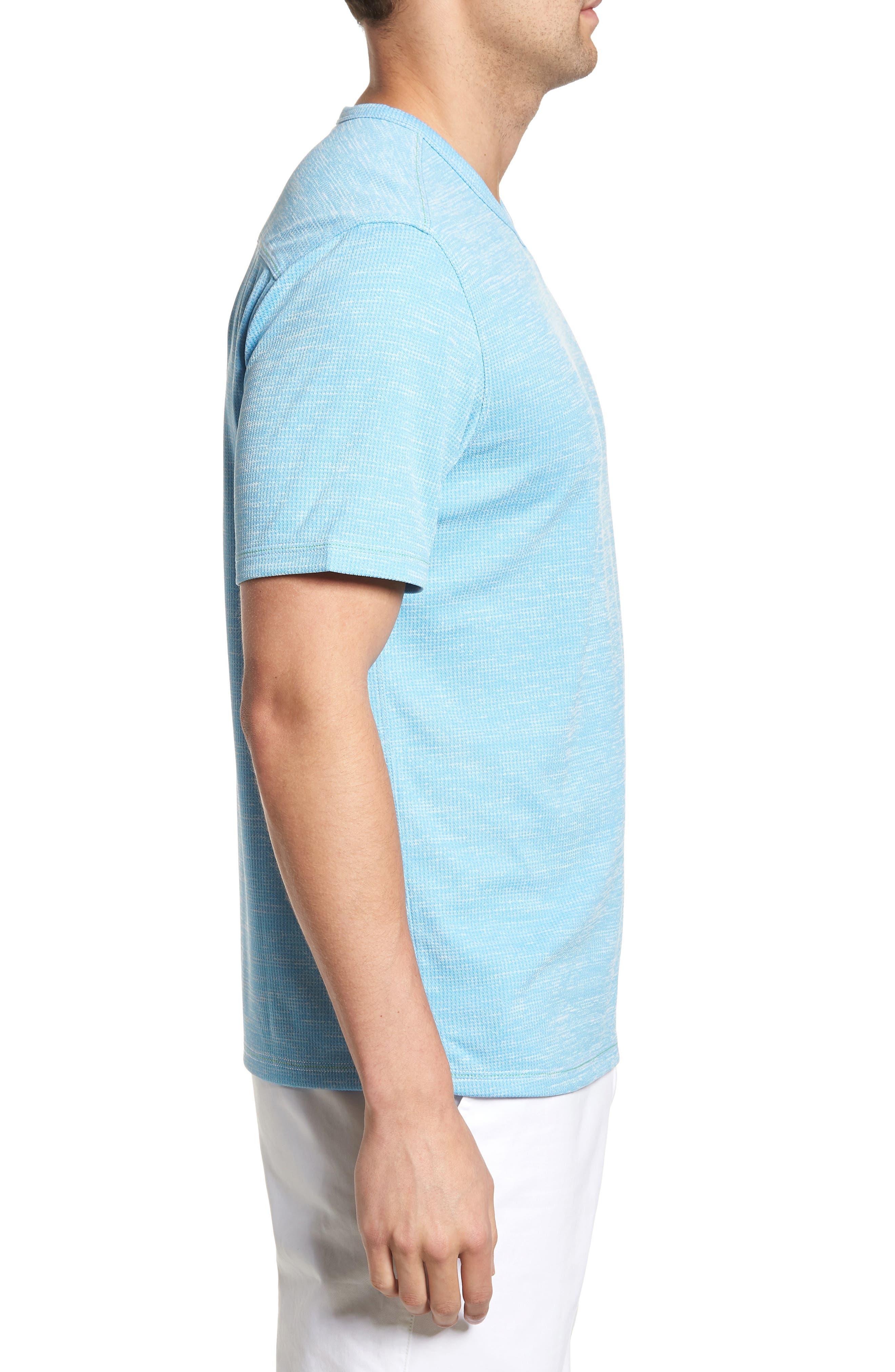 Sand Key V-Neck T-Shirt,                             Alternate thumbnail 20, color,