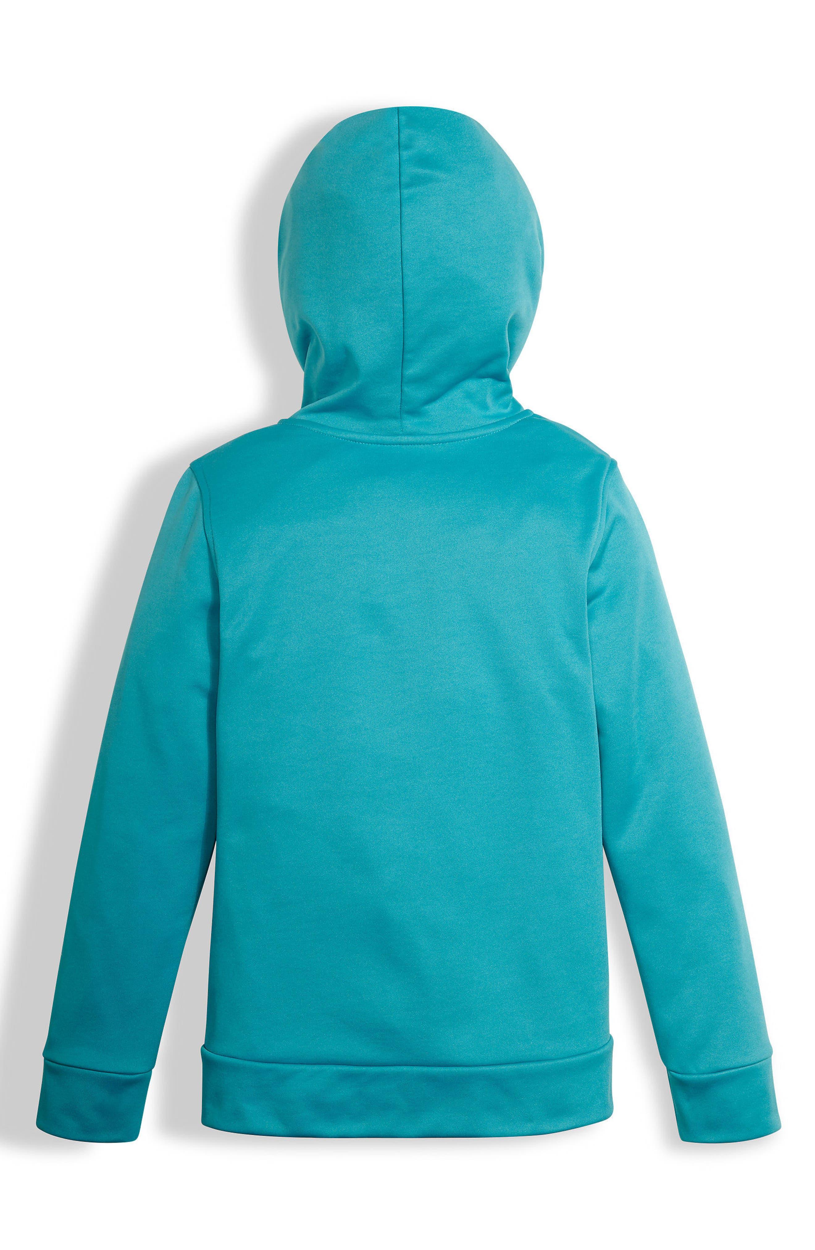 Surgent Fleece Pullover Hoodie,                         Main,                         color, 420