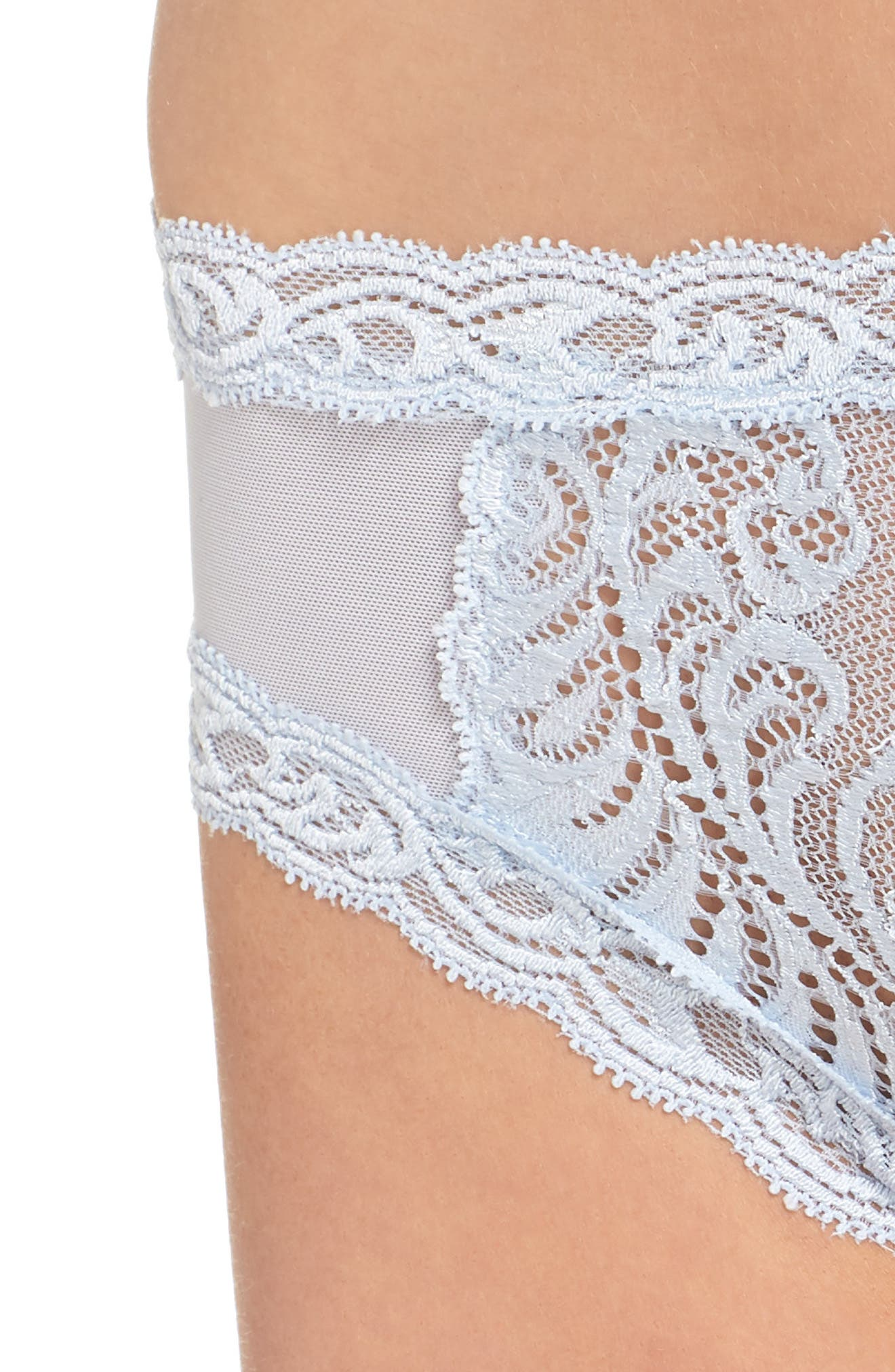 Feathers Hipster Briefs,                             Alternate thumbnail 340, color,