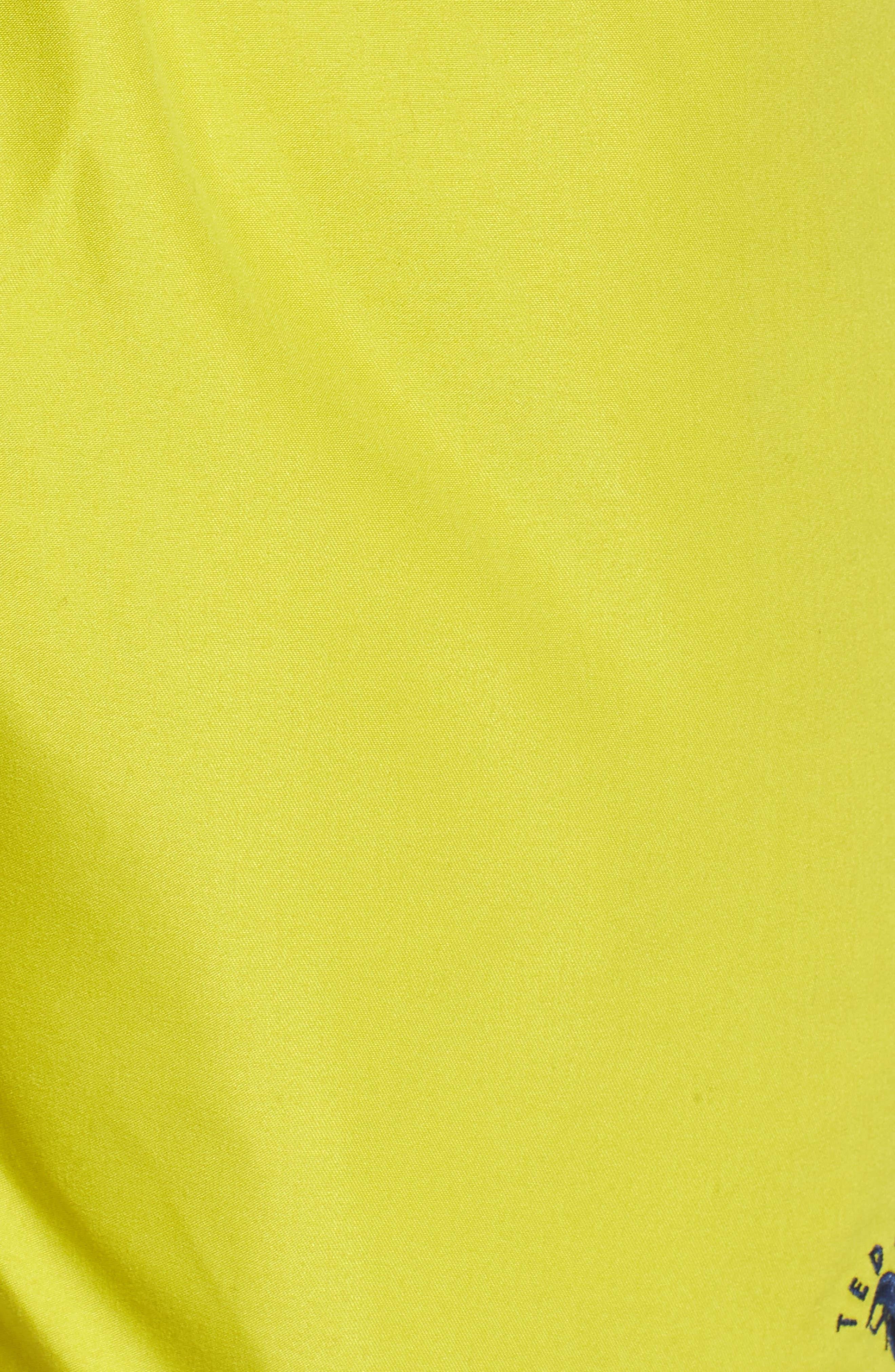 Danbury Swim Shorts,                             Alternate thumbnail 5, color,                             303
