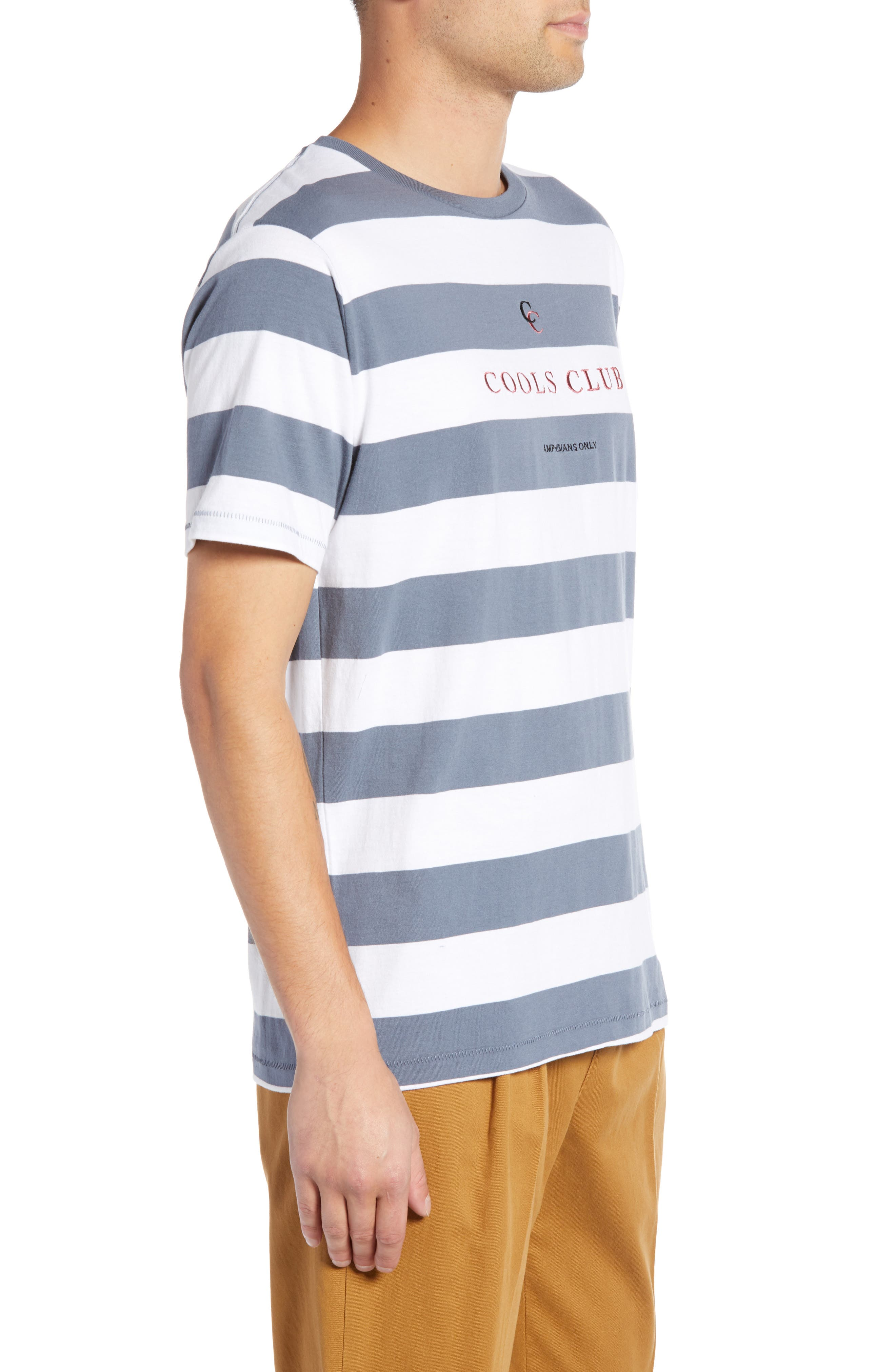 Embroidered Cools Club Stripe T-Shirt,                             Alternate thumbnail 3, color,                             NAVY STRIPE