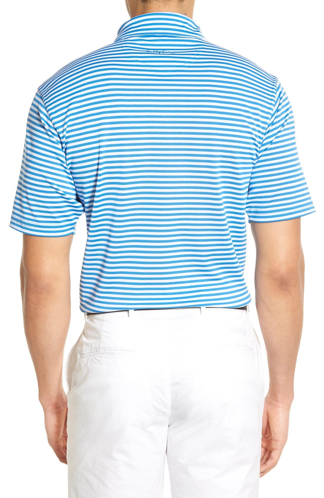 XH2O Feed Stripe Stretch Golf Polo,                             Alternate thumbnail 33, color,
