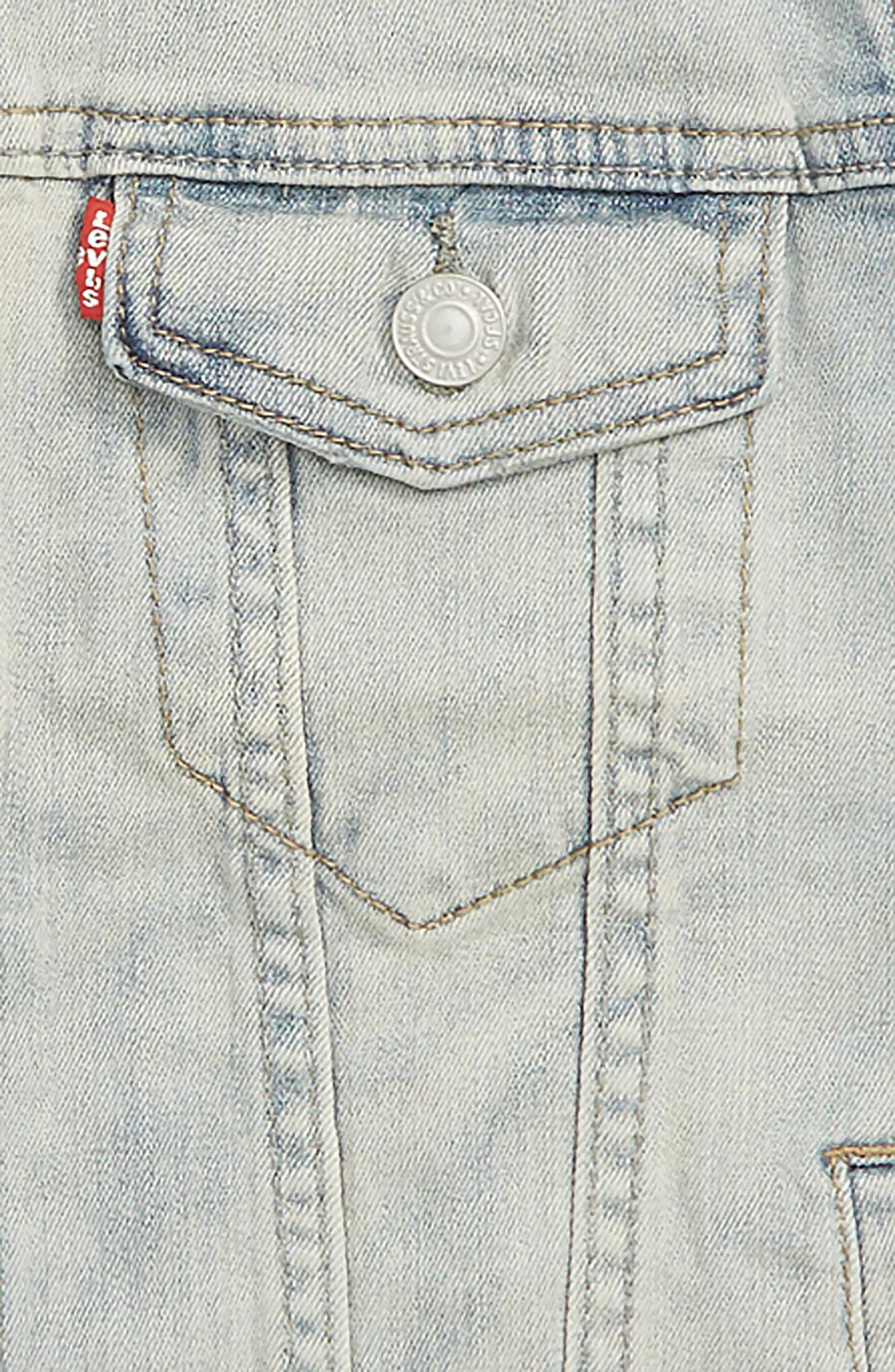 Trucker Denim Jacket,                             Alternate thumbnail 2, color,                             407