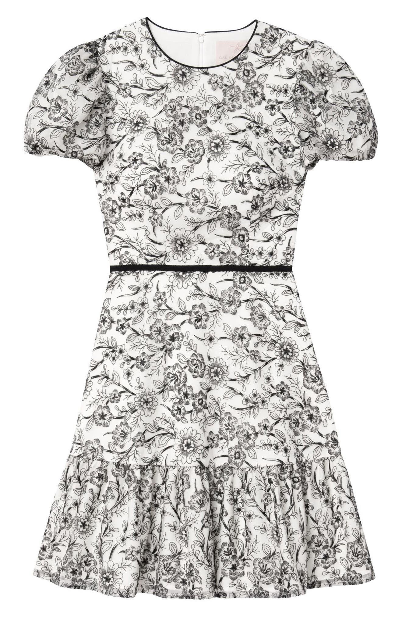 Viola Raffia Embroidery Pattern Dress,                             Alternate thumbnail 4, color,                             BLACK/ NUDE