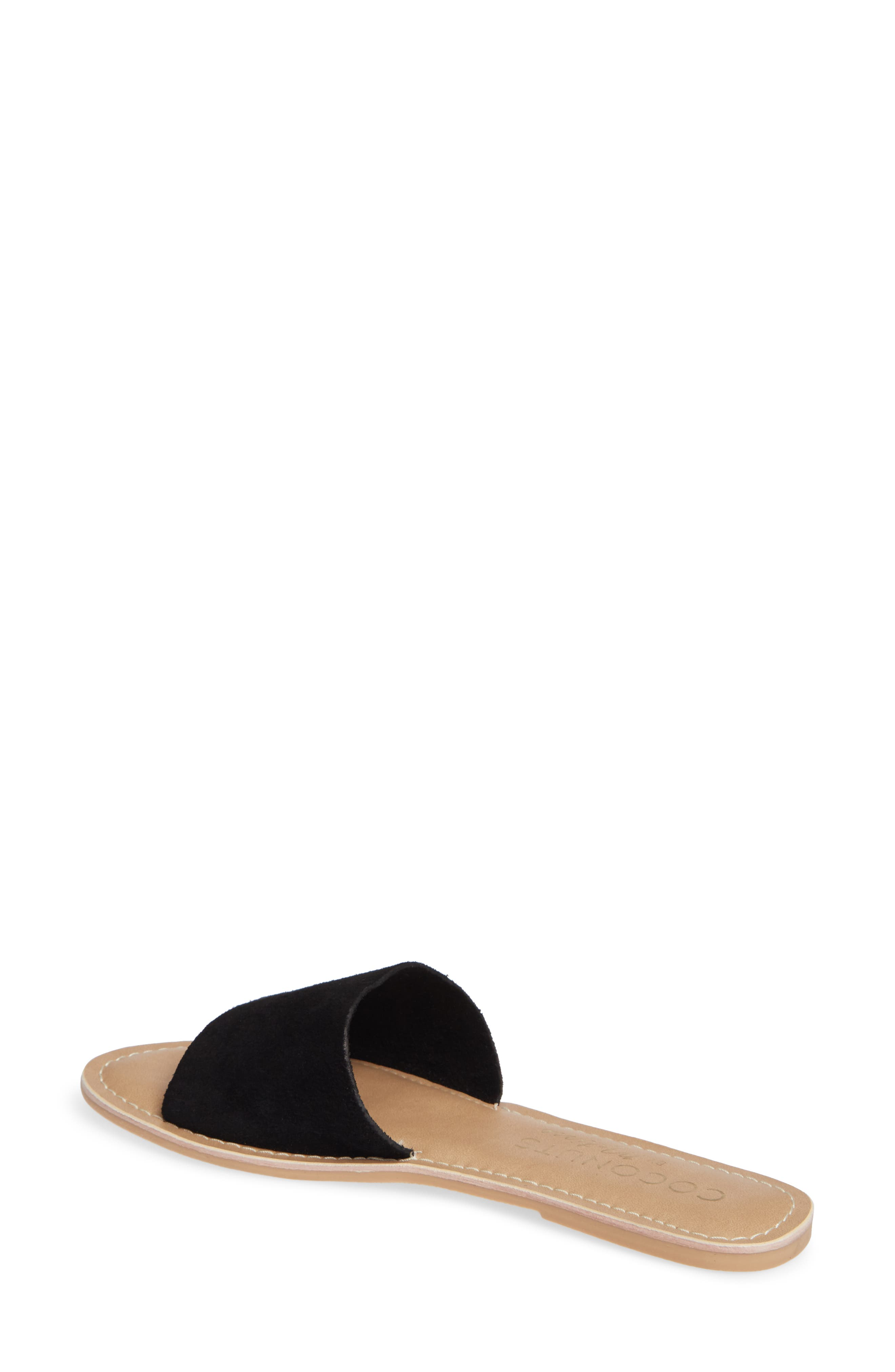 Cabana Slide Sandal,                             Alternate thumbnail 2, color,                             BLACK SUEDE