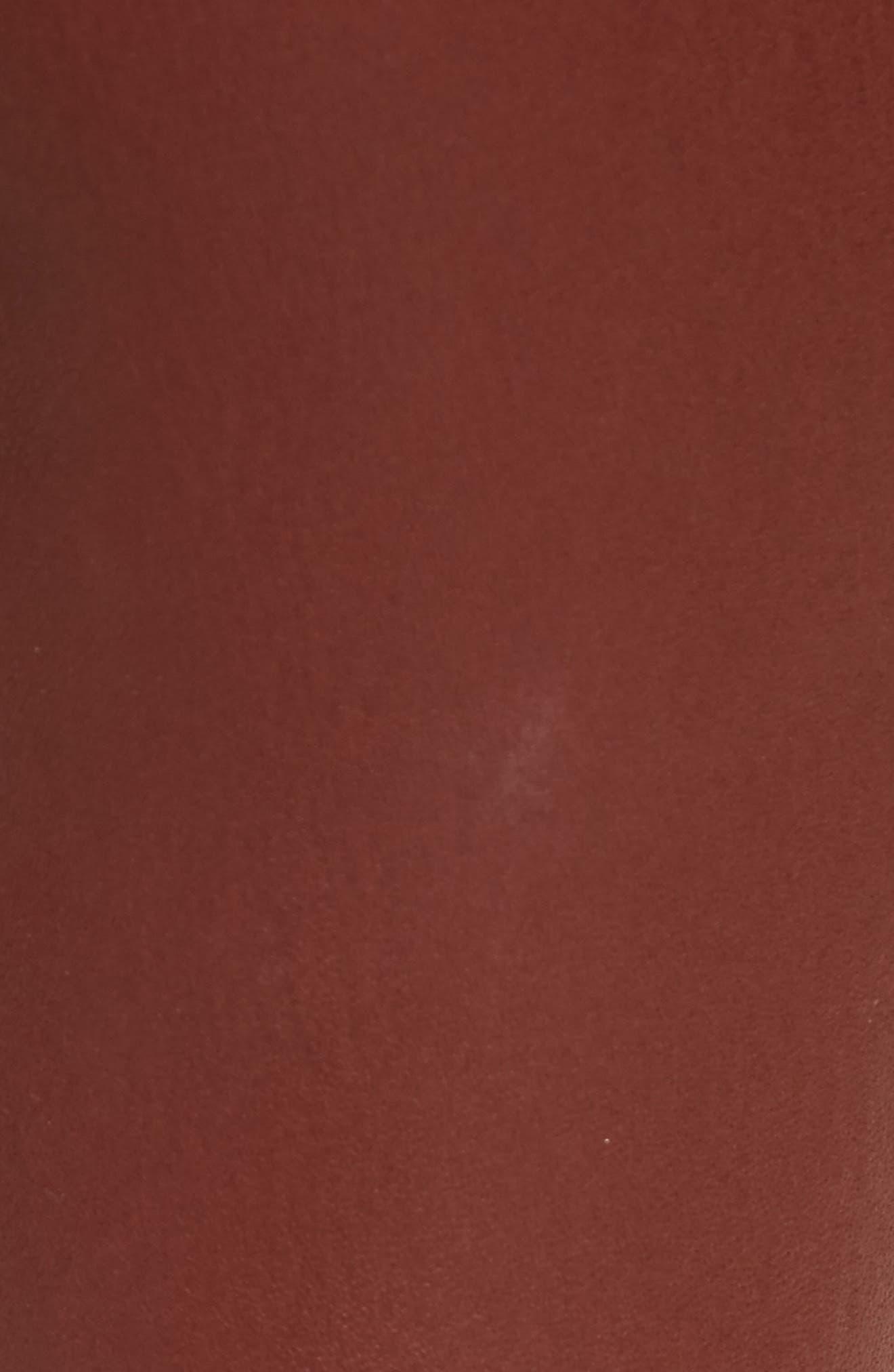 Bristol Leather Riding Pants,                             Alternate thumbnail 5, color,                             215