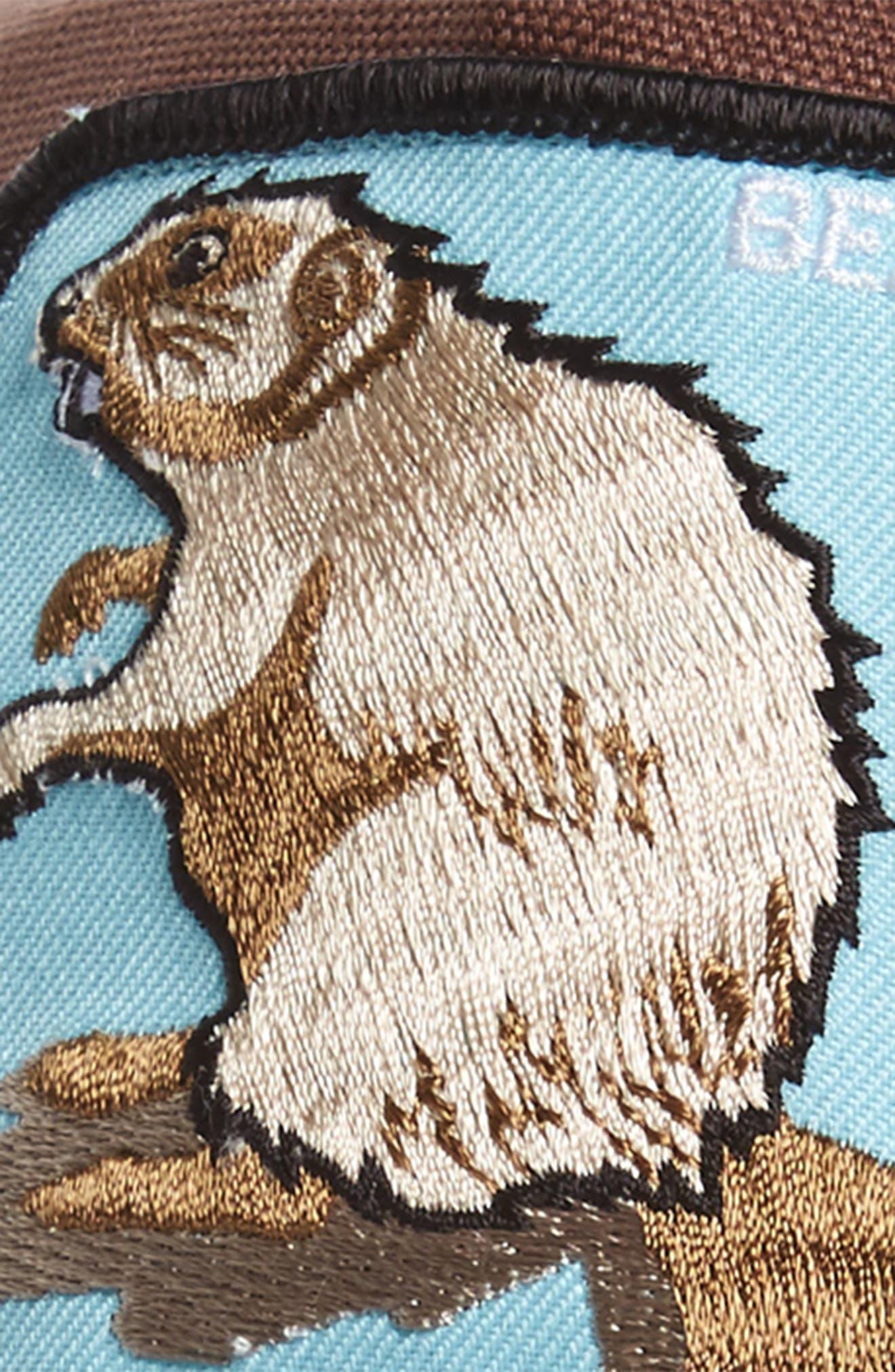 Animal Farm Beaver Mesh Trucker Hat,                             Alternate thumbnail 3, color,                             BROWN