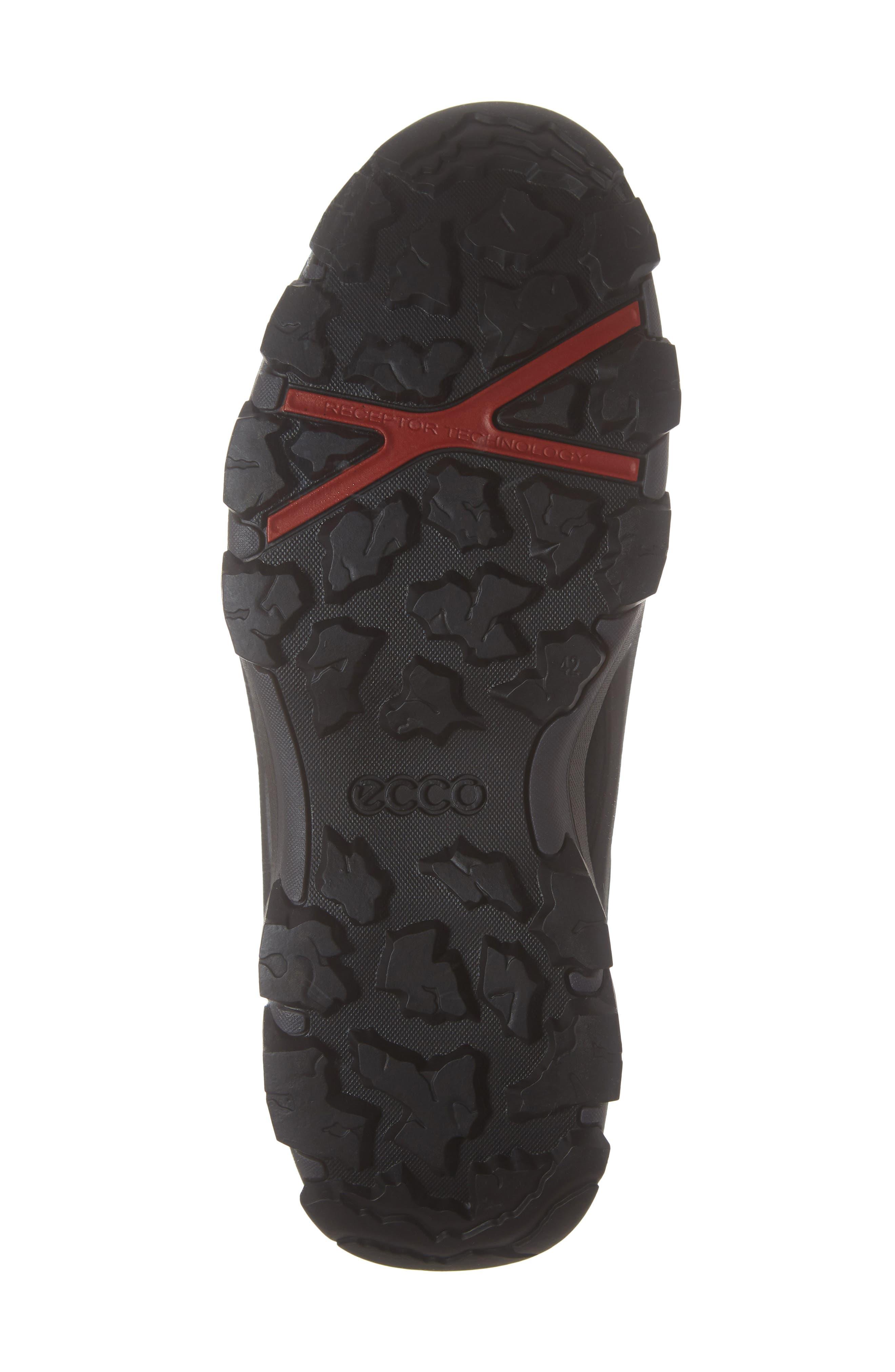 Terra Evo GTX Low Hiking Shoe,                             Alternate thumbnail 6, color,                             009