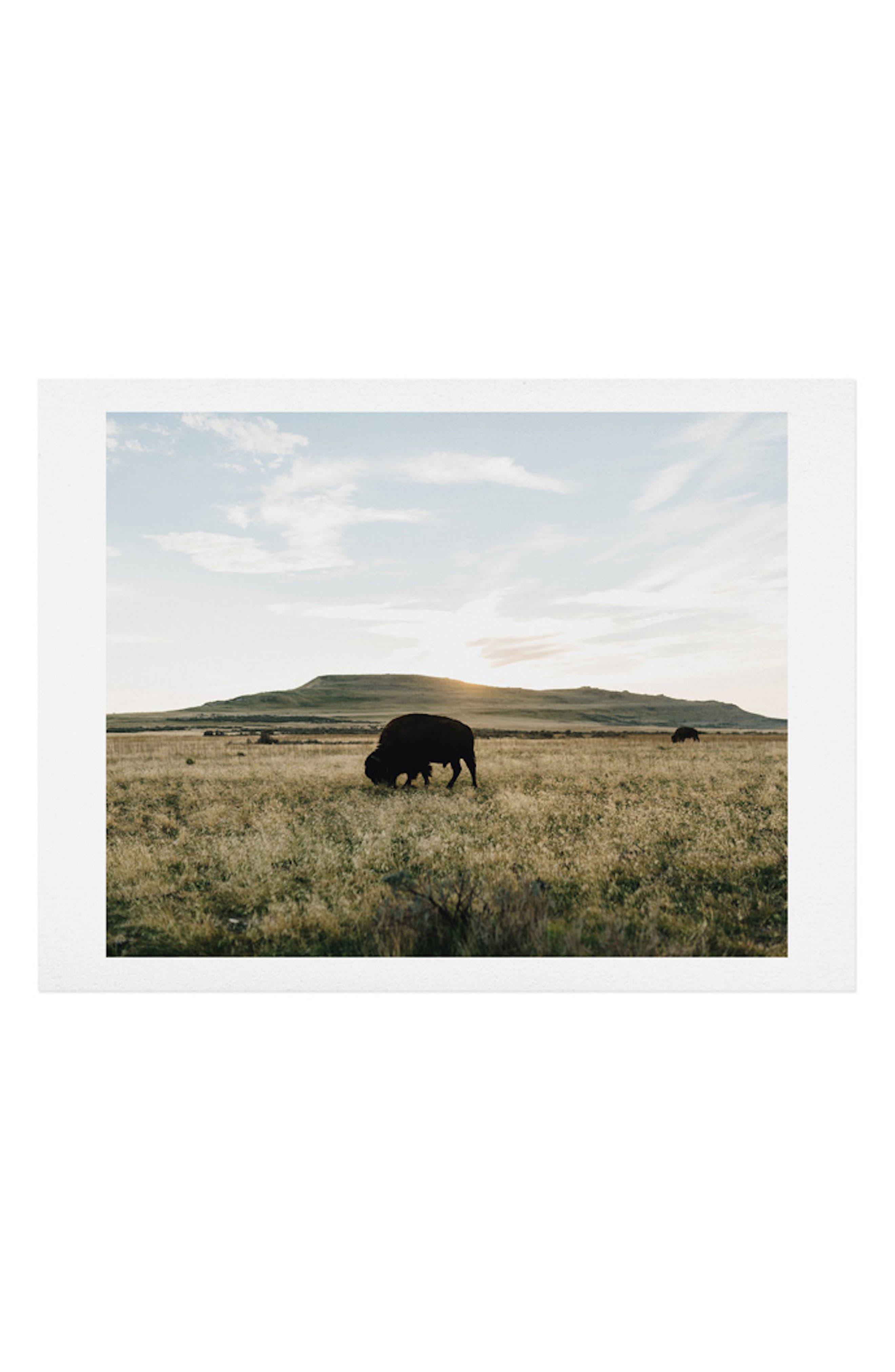 Buffalo Sunset Art Print,                         Main,                         color,