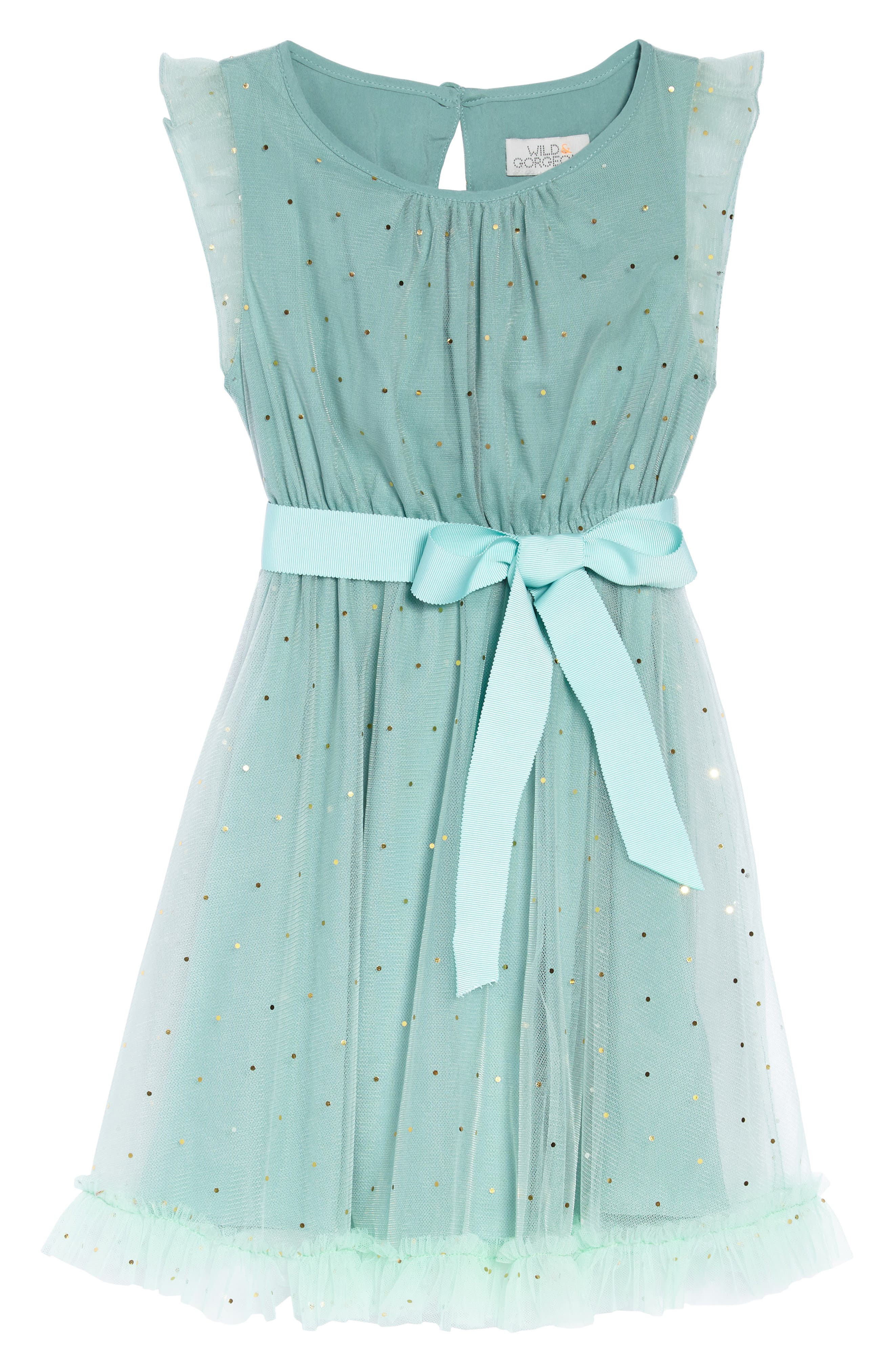Christina Dot Tulle Fit & Flare Dress,                             Main thumbnail 1, color,                             300