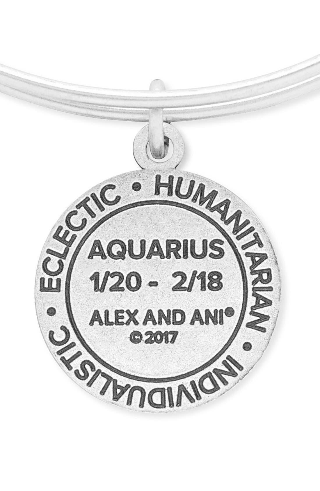 'Zodiac' Expandable Wire Bangle,                             Alternate thumbnail 2, color,                             040