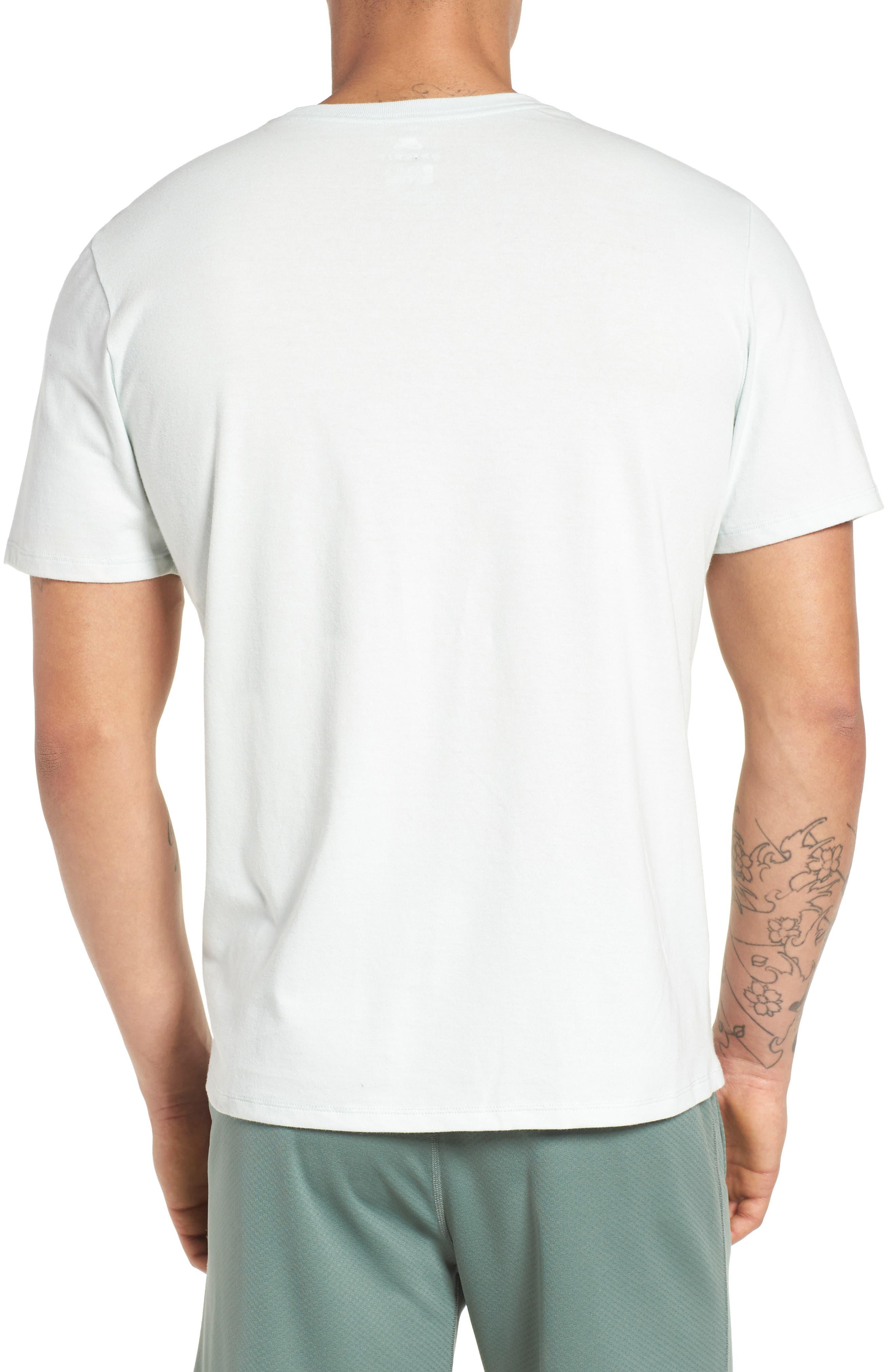 SB Dry BBQ Fish Crewneck T-Shirt,                             Alternate thumbnail 2, color,