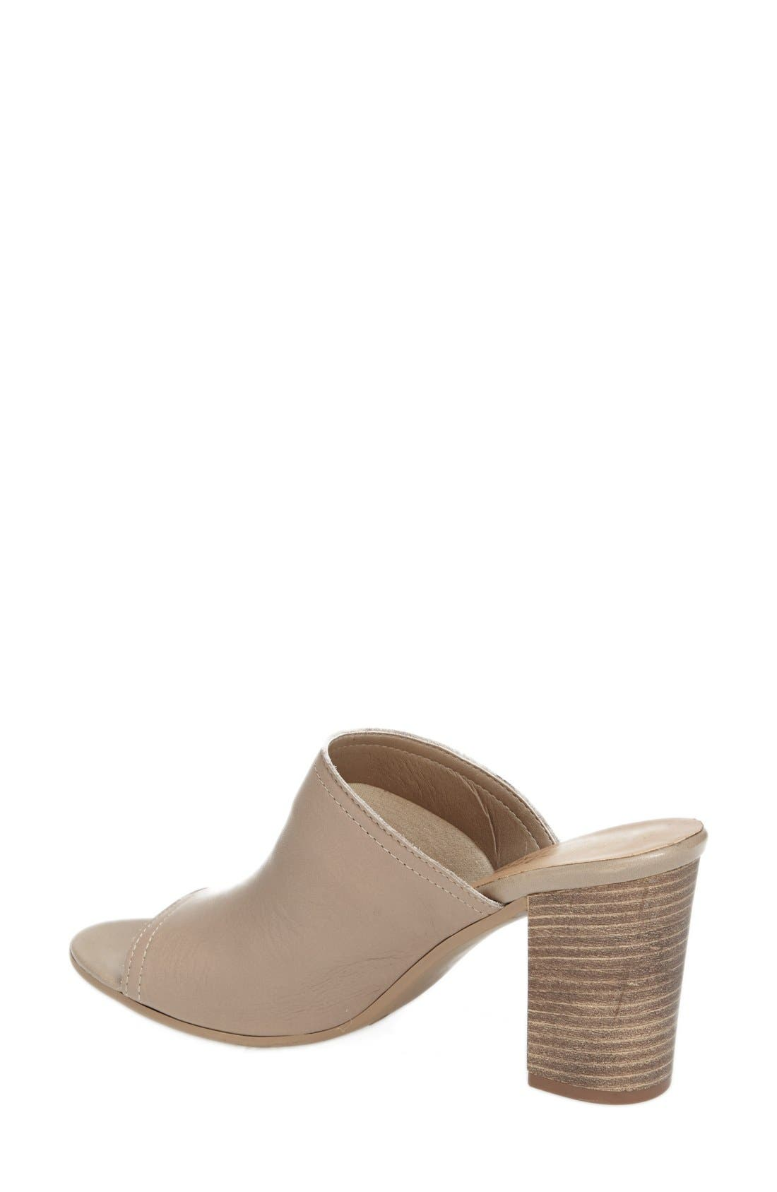'Arno' Leather Mule,                             Alternate thumbnail 18, color,