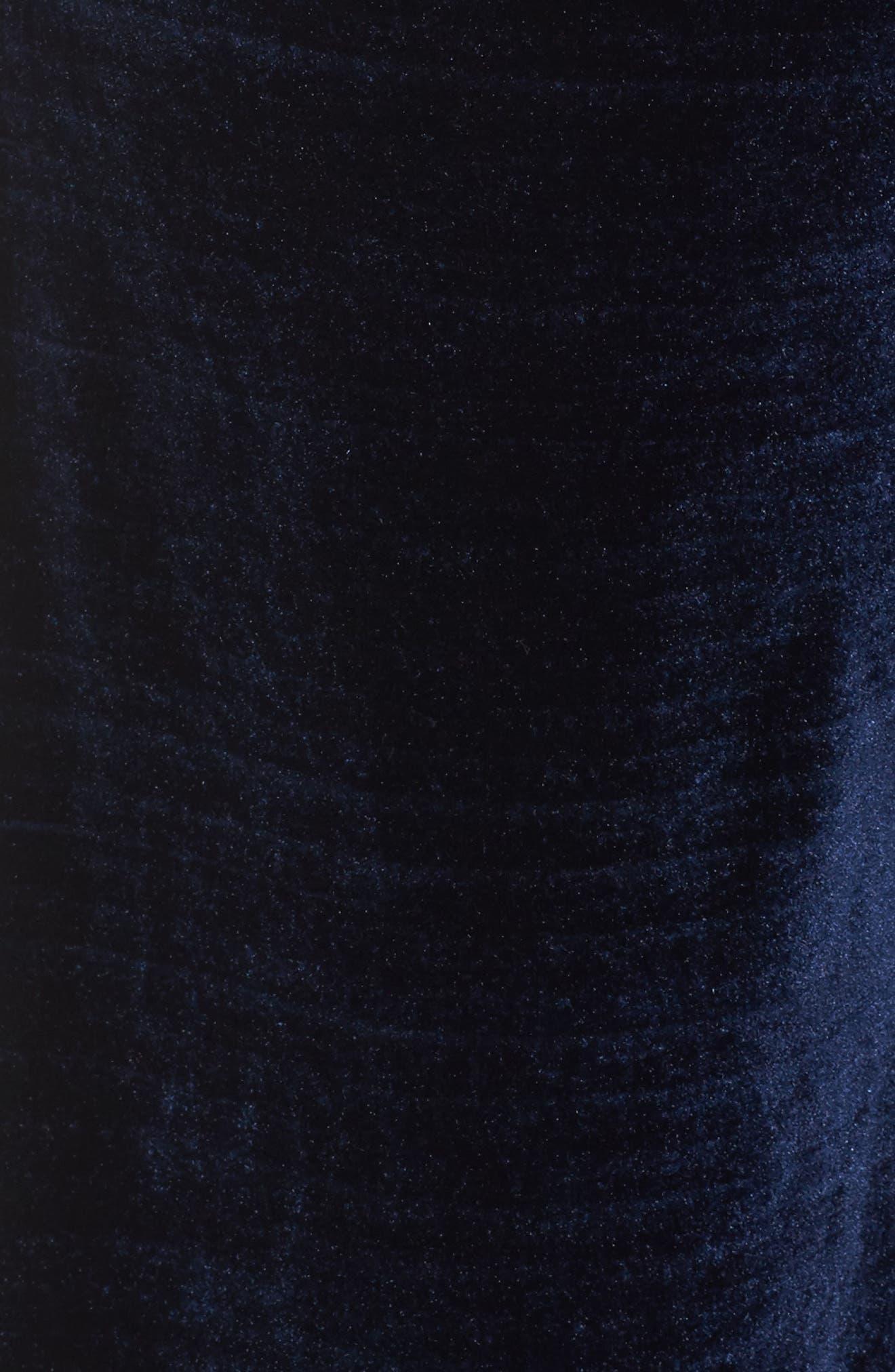Wide Leg Velvet Pants,                             Alternate thumbnail 5, color,                             401
