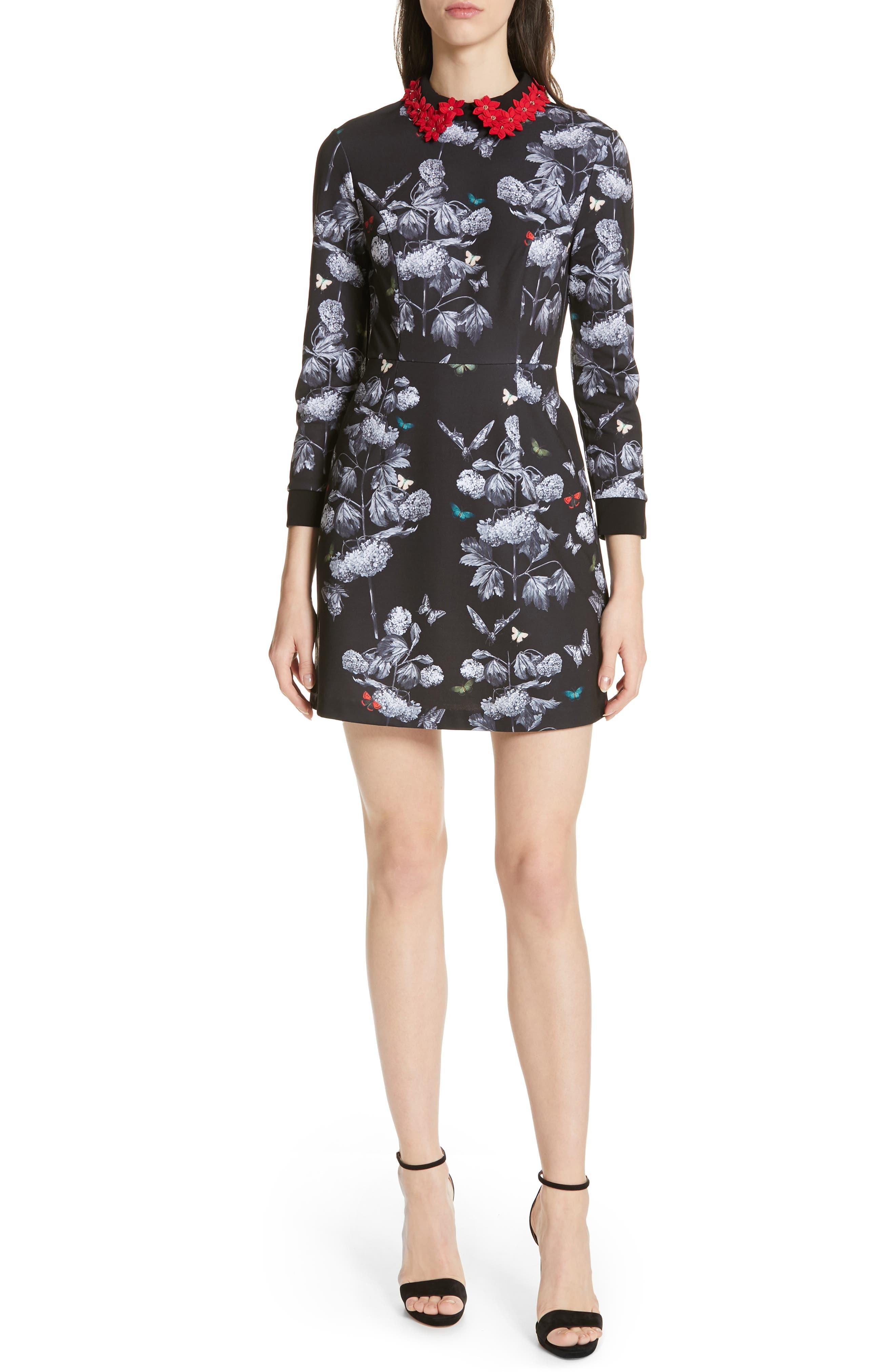 Ted Baker London Amaliia Narrnia Floral Collar Dress, Black