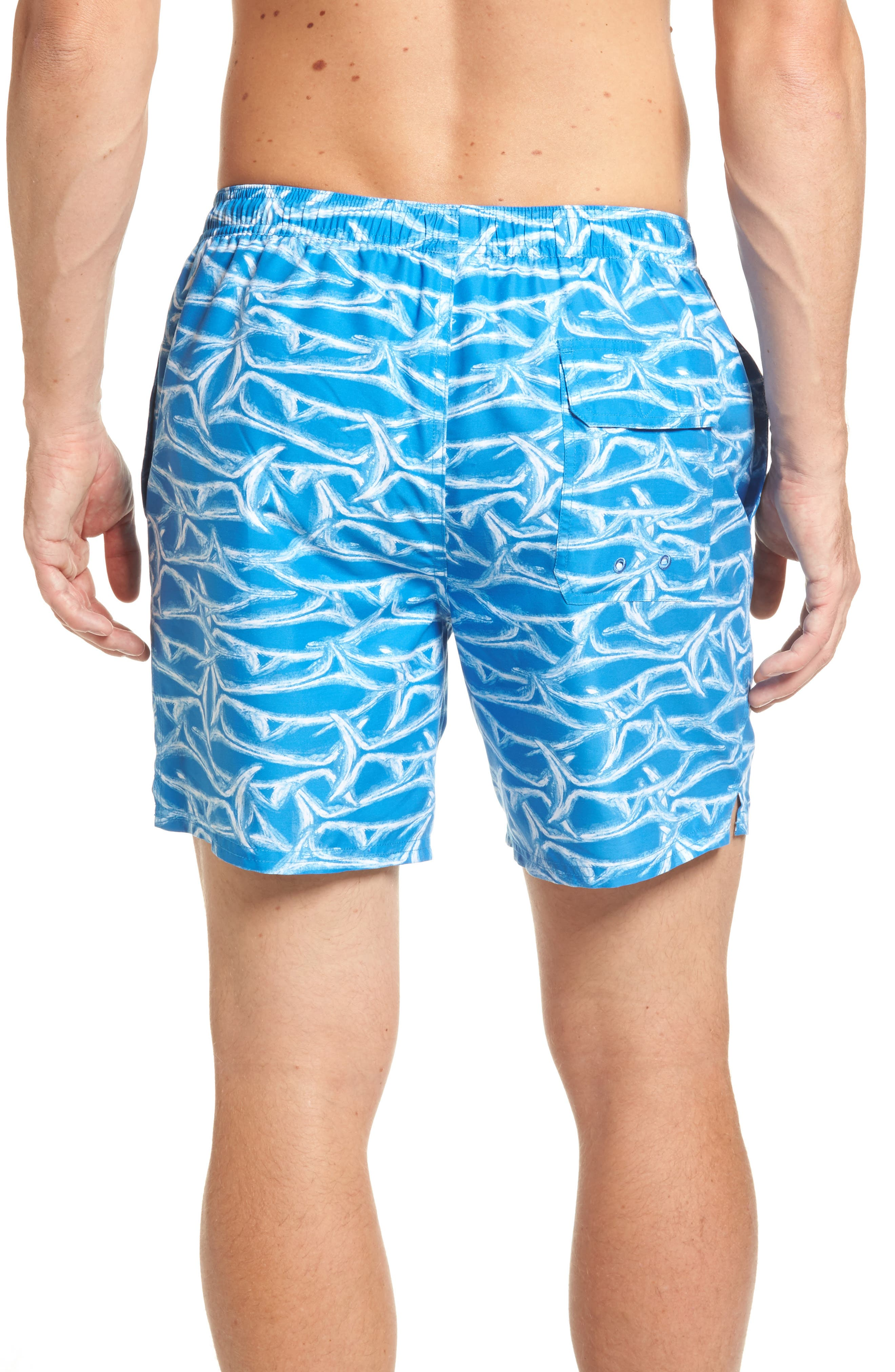 Brushed Marlin Chappy Swim Trunks,                             Alternate thumbnail 2, color,                             496