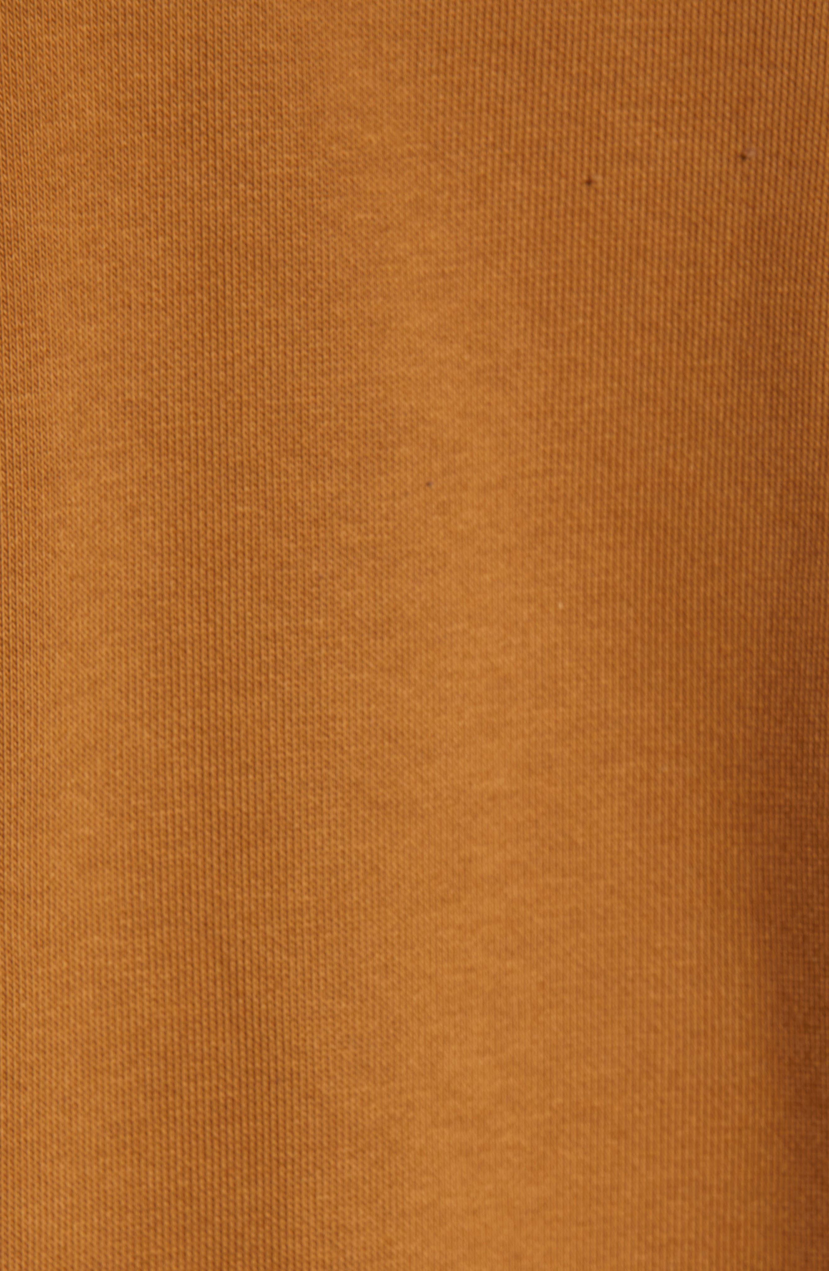 Logo Embroidered Hooded Sweatshirt,                             Alternate thumbnail 5, color,                             HAMILTON BROWN / BLACK