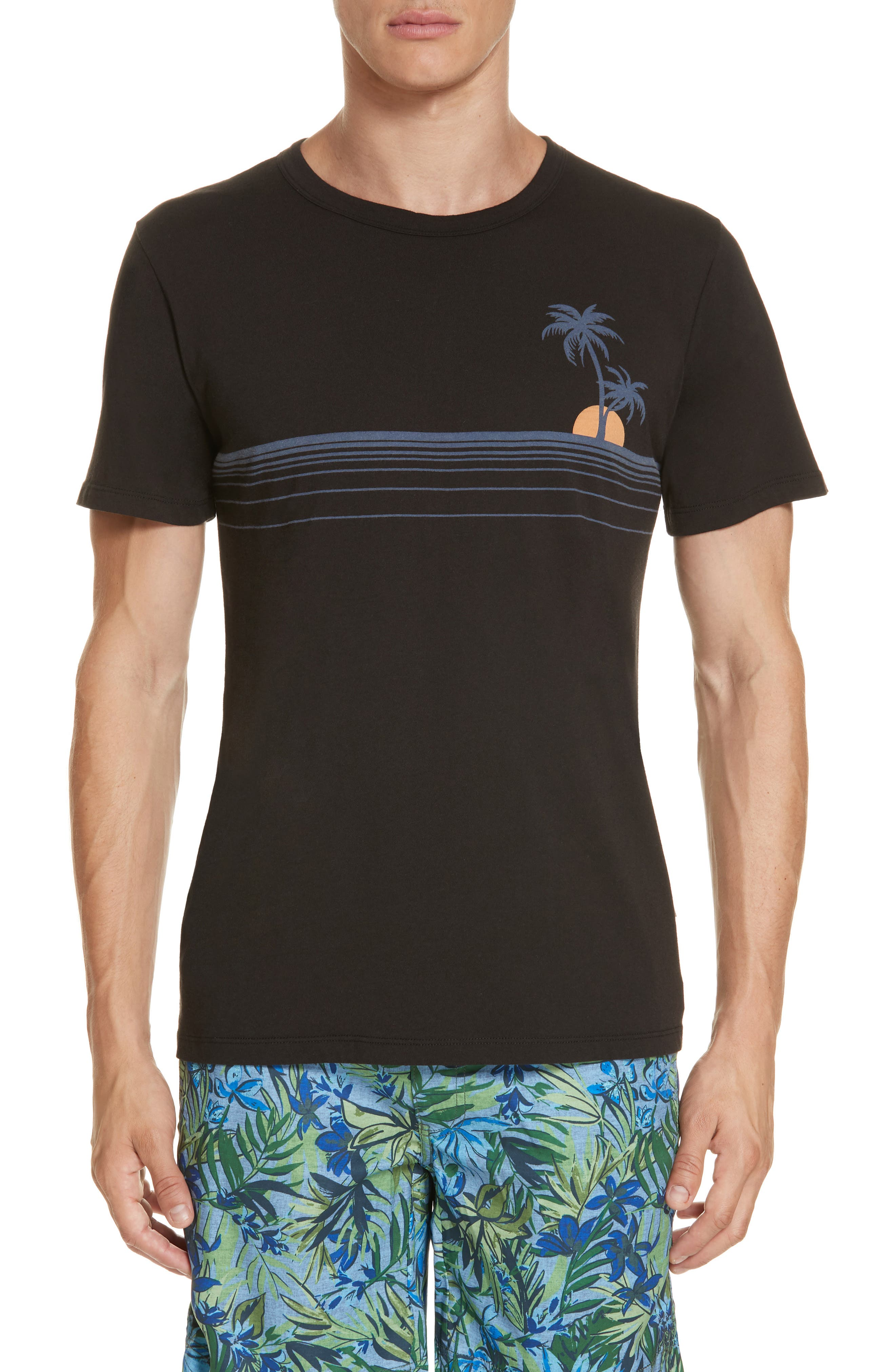 Johnny Chest Palm Stripe Graphic T-Shirt,                         Main,                         color, BLACK