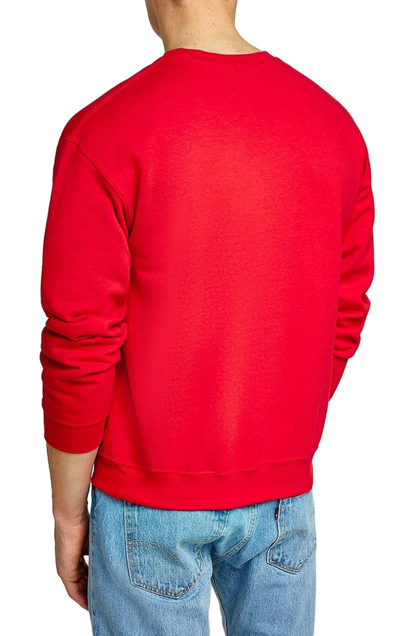 Oversize Crewneck Sweatshirt,                             Alternate thumbnail 2, color,                             600