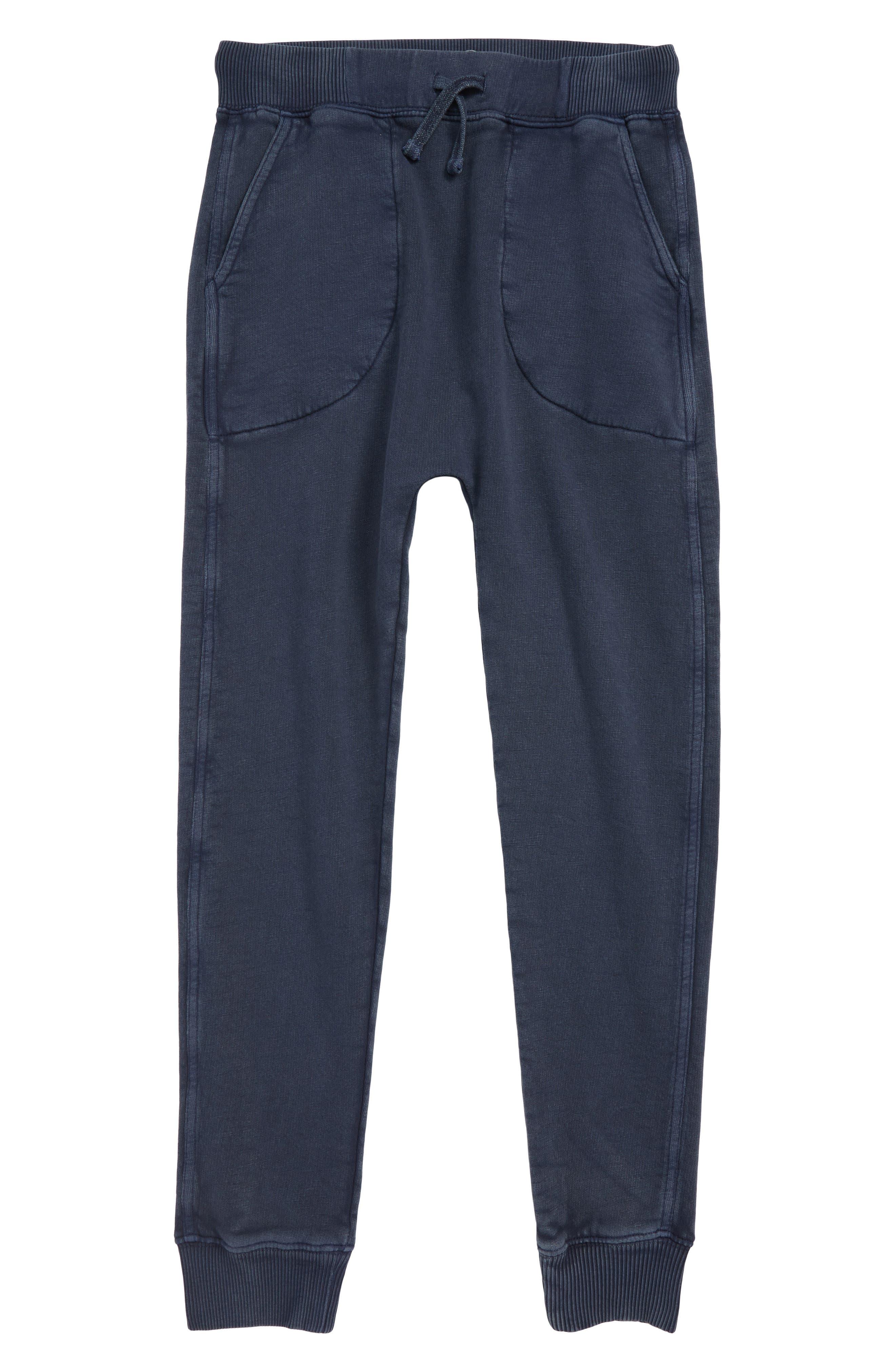 Jogger Pants,                         Main,                         color, NAVY INDIA INK