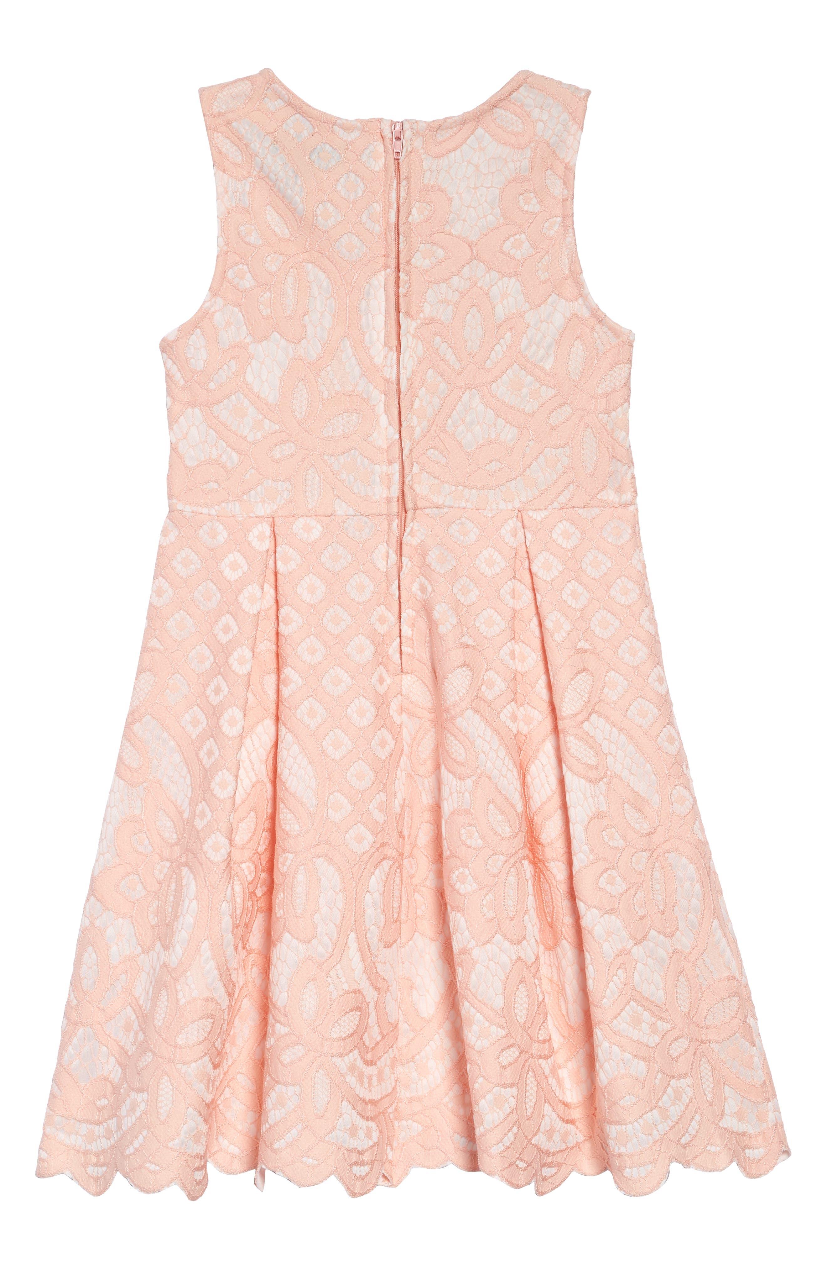 Two Tone Lace Dress,                             Alternate thumbnail 2, color,                             BLUSH