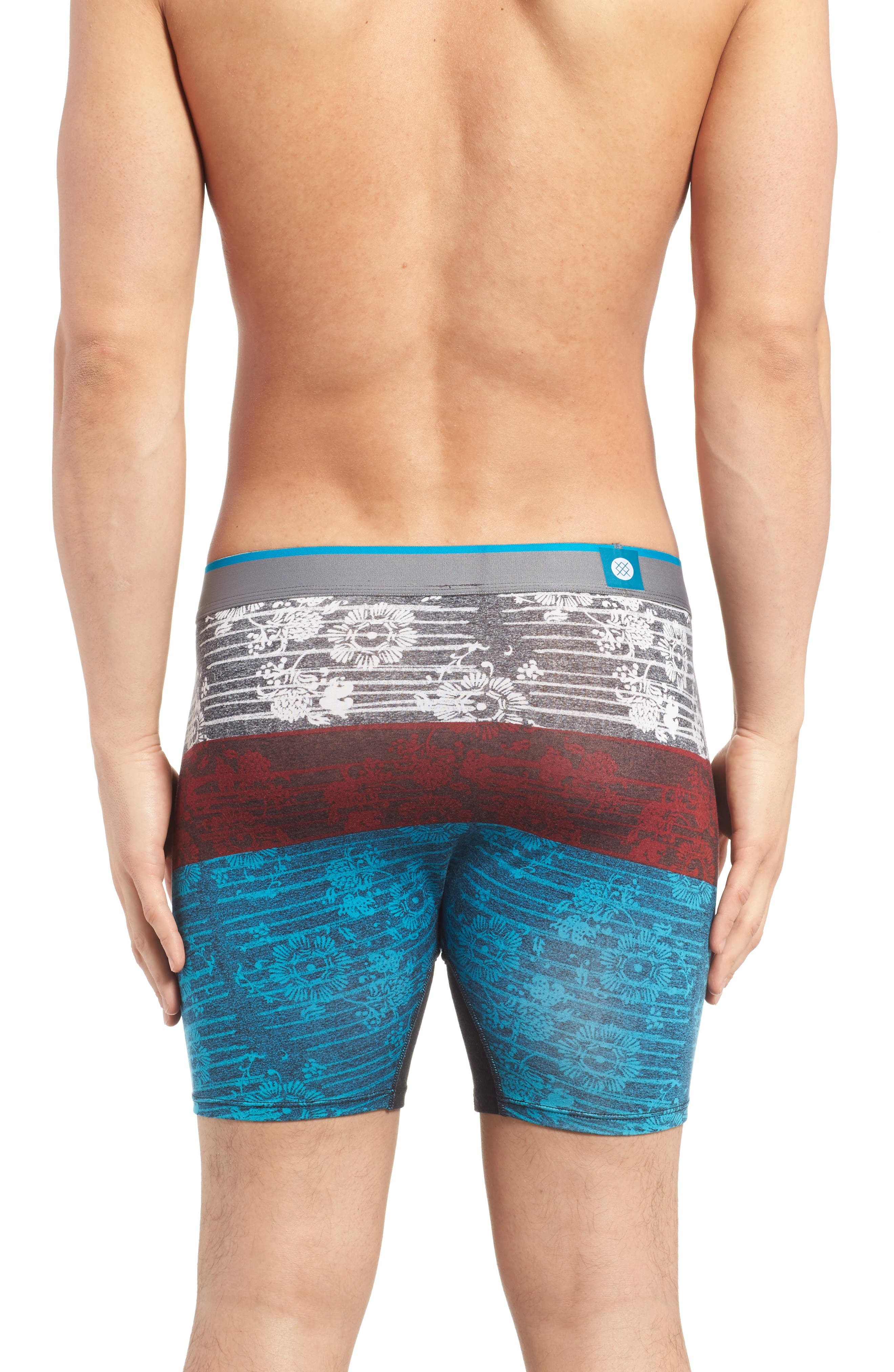 The Wholester - Liner Boxer Briefs,                             Alternate thumbnail 2, color,                             030