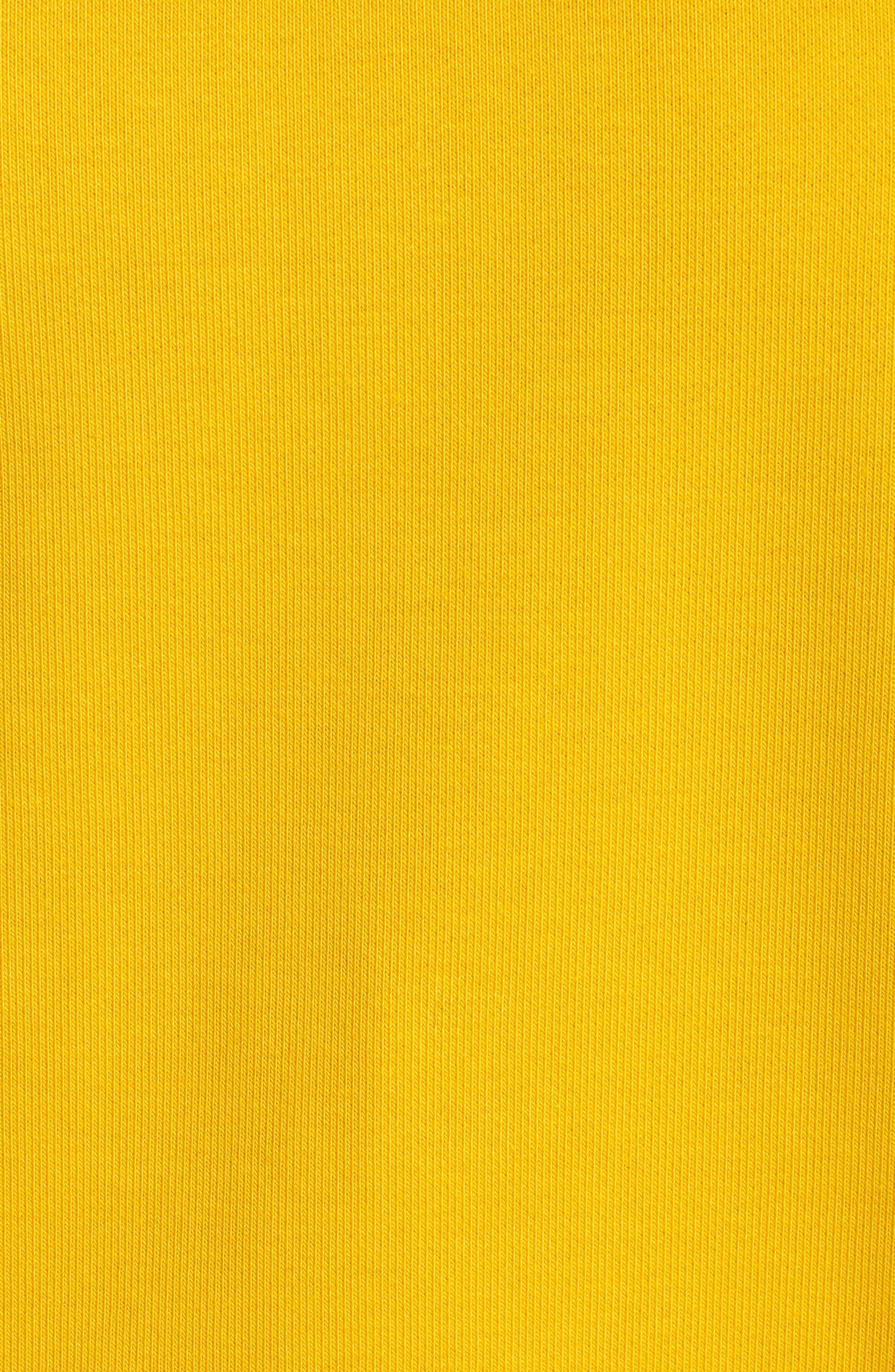Flag Badge Sweatshirt,                             Alternate thumbnail 20, color,