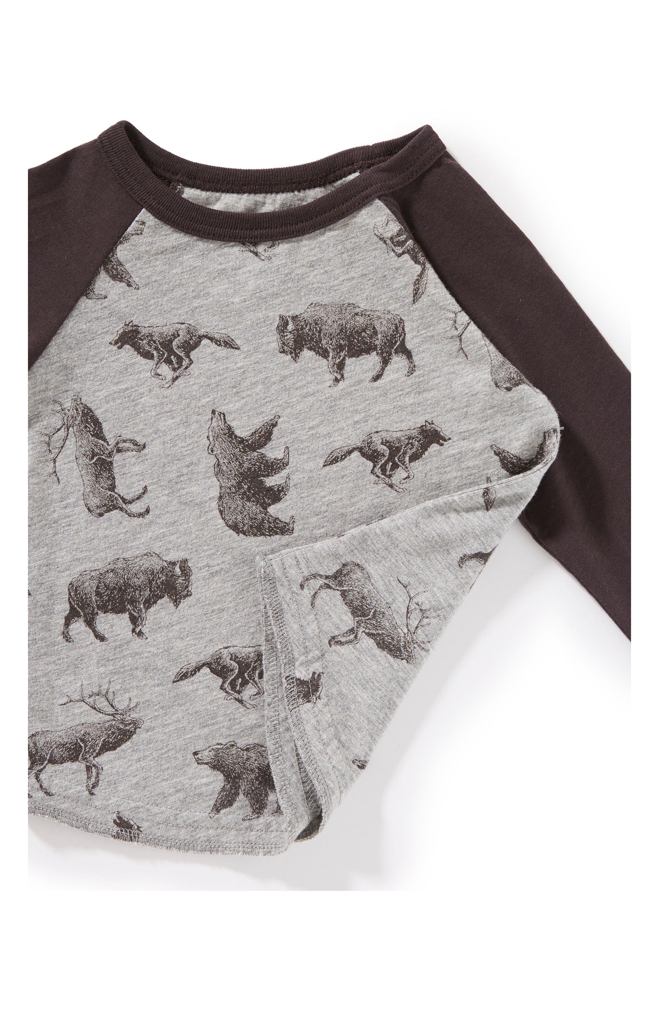 Allover Animal Print Raglan T-Shirt,                             Alternate thumbnail 2, color,                             031