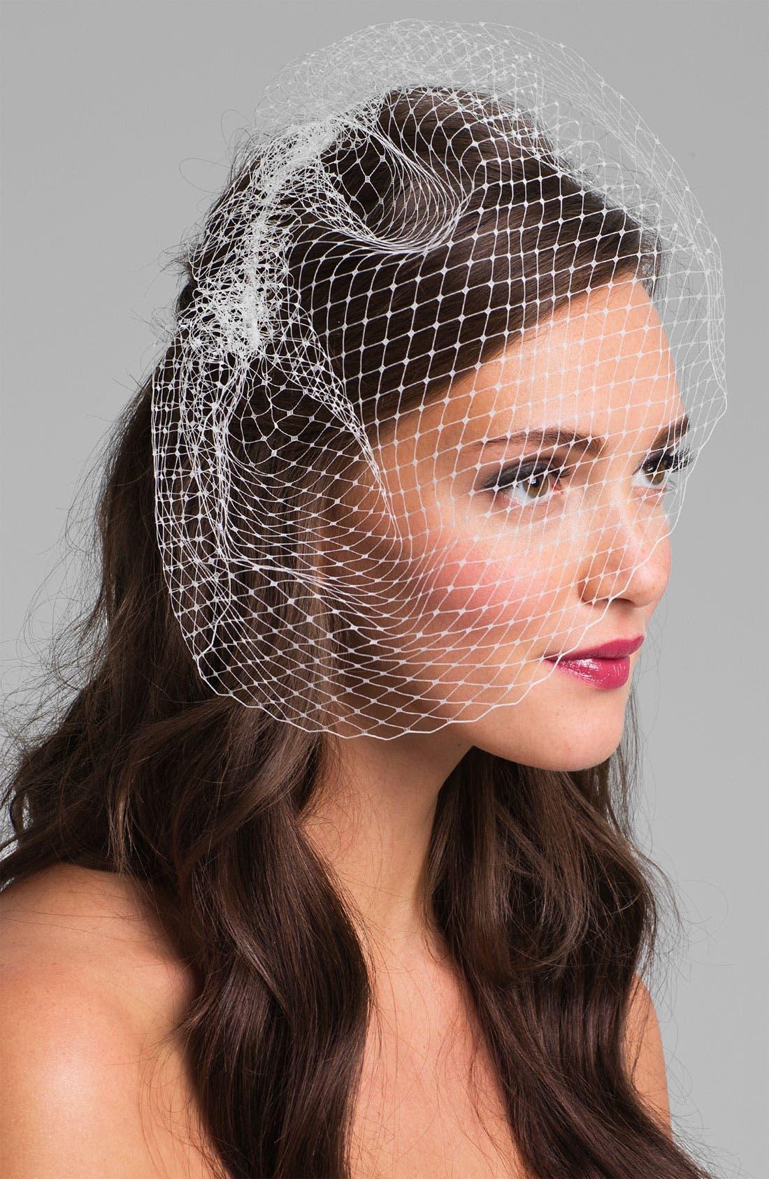French Net Birdcage Veil, Main, color, 900