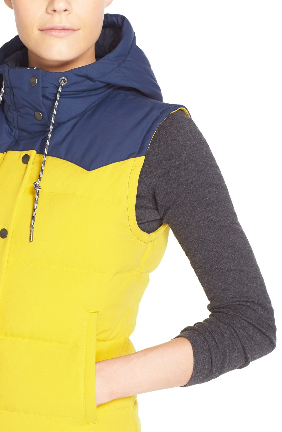 'Bivy' Water Repellent 600 Fill Power Down Vest,                             Alternate thumbnail 39, color,