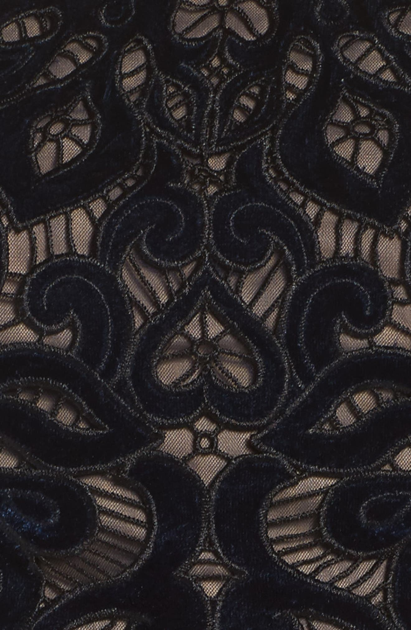 Two-Piece Embroidered Velvet Gown,                             Alternate thumbnail 5, color,                             410