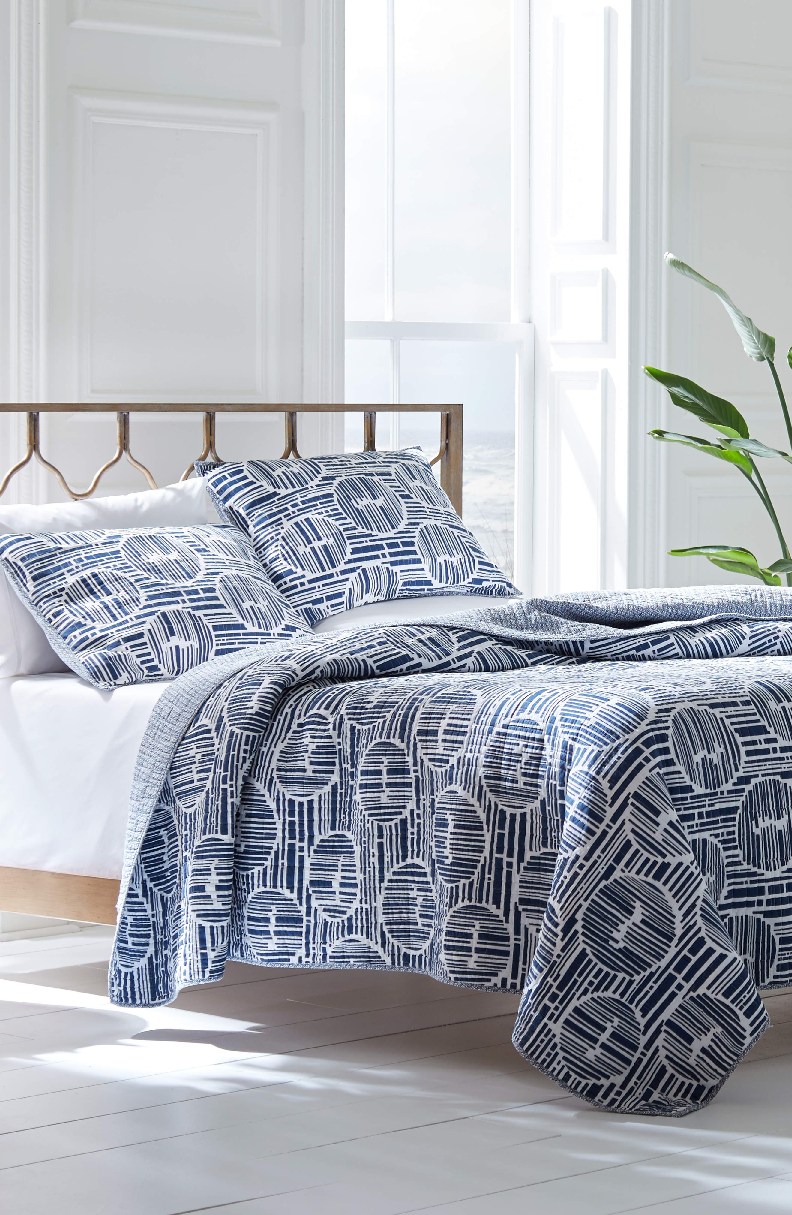 Bamboo Forest Blue Aster Reversible Quilt & Sham Set,                         Main,                         color, 400