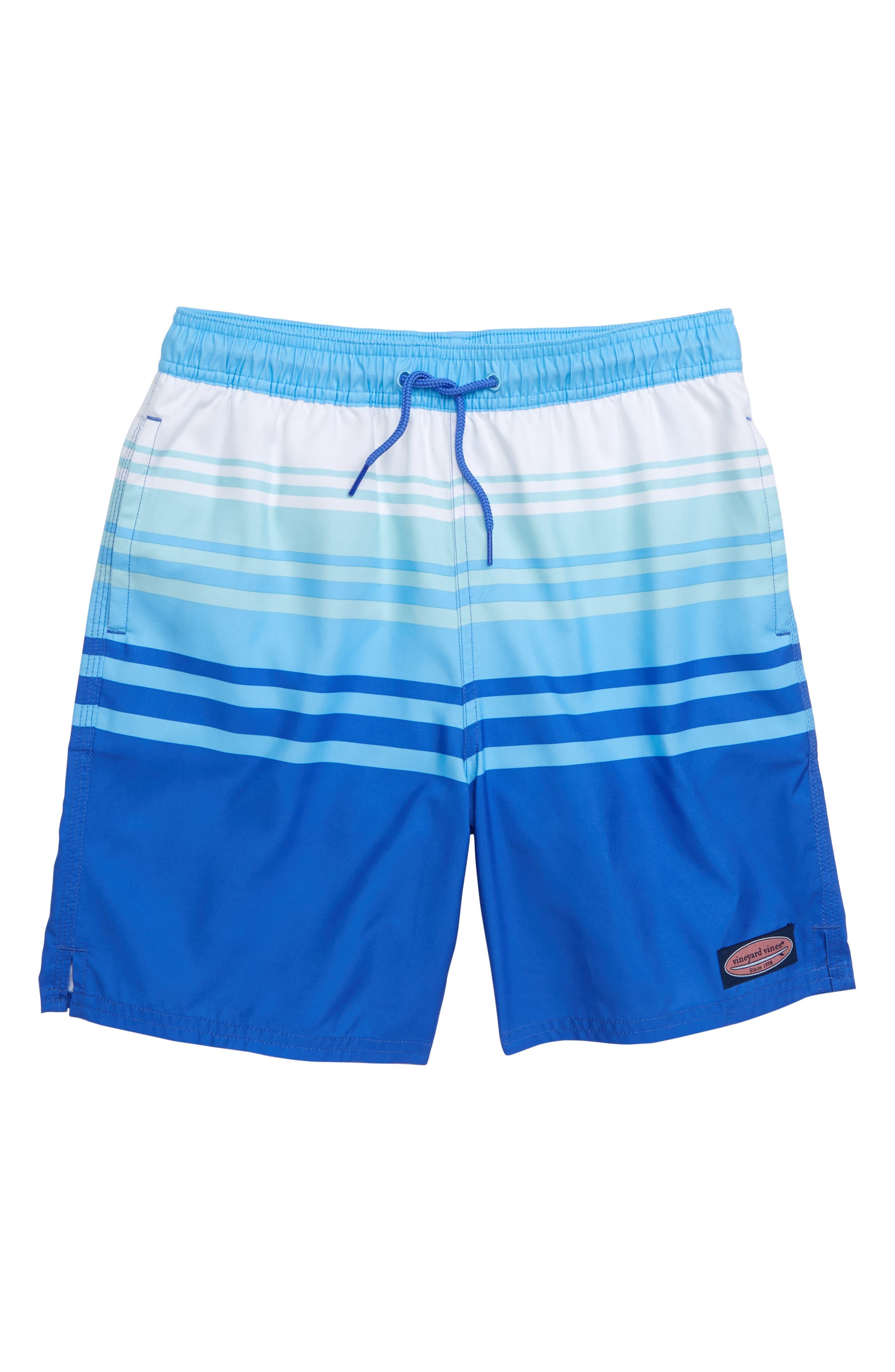 Dusk Stripe Chappy Swim Trunks,                         Main,                         color, 500