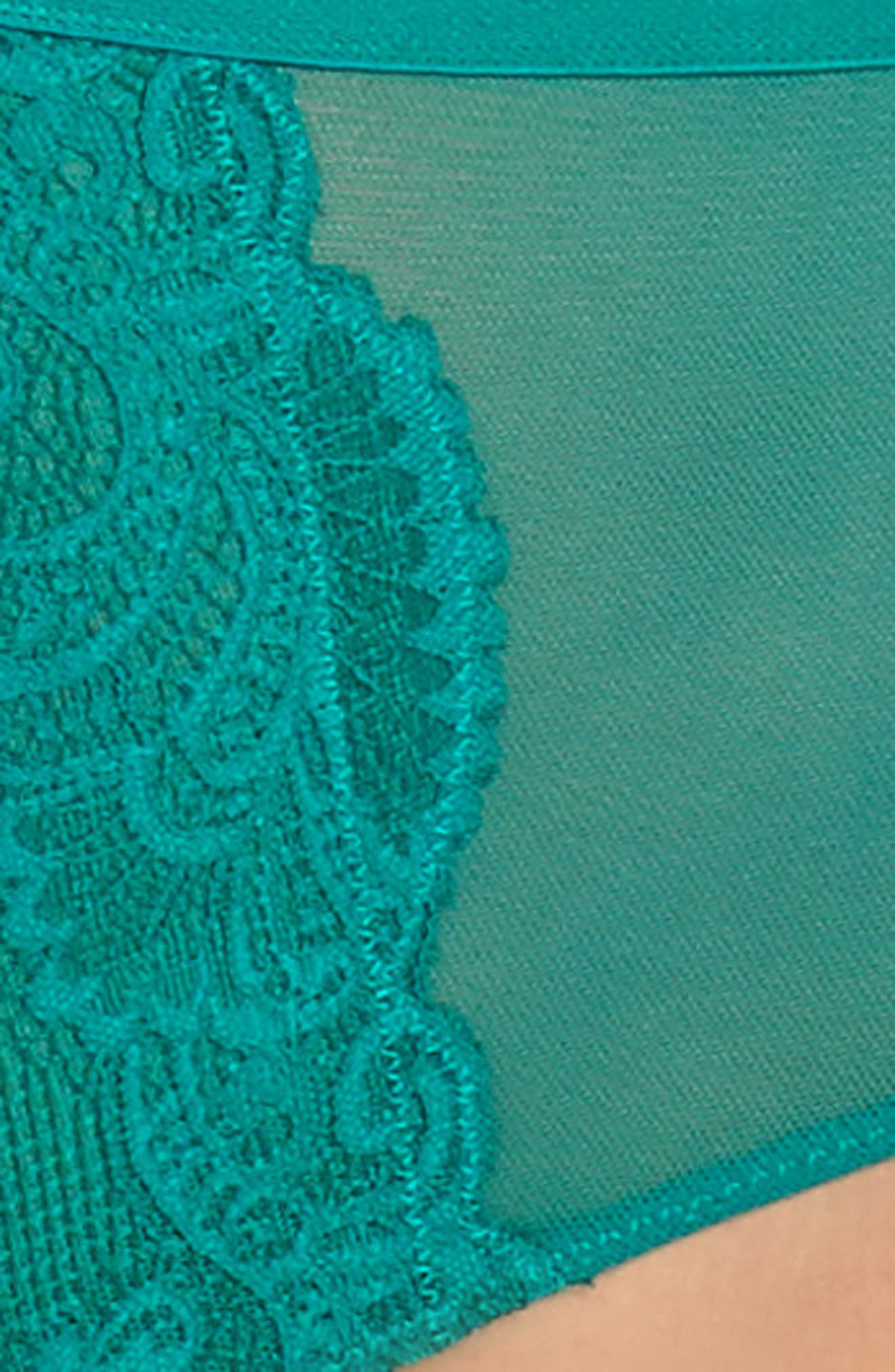 Intimately FP Jasmine High Waist Briefs,                             Alternate thumbnail 18, color,