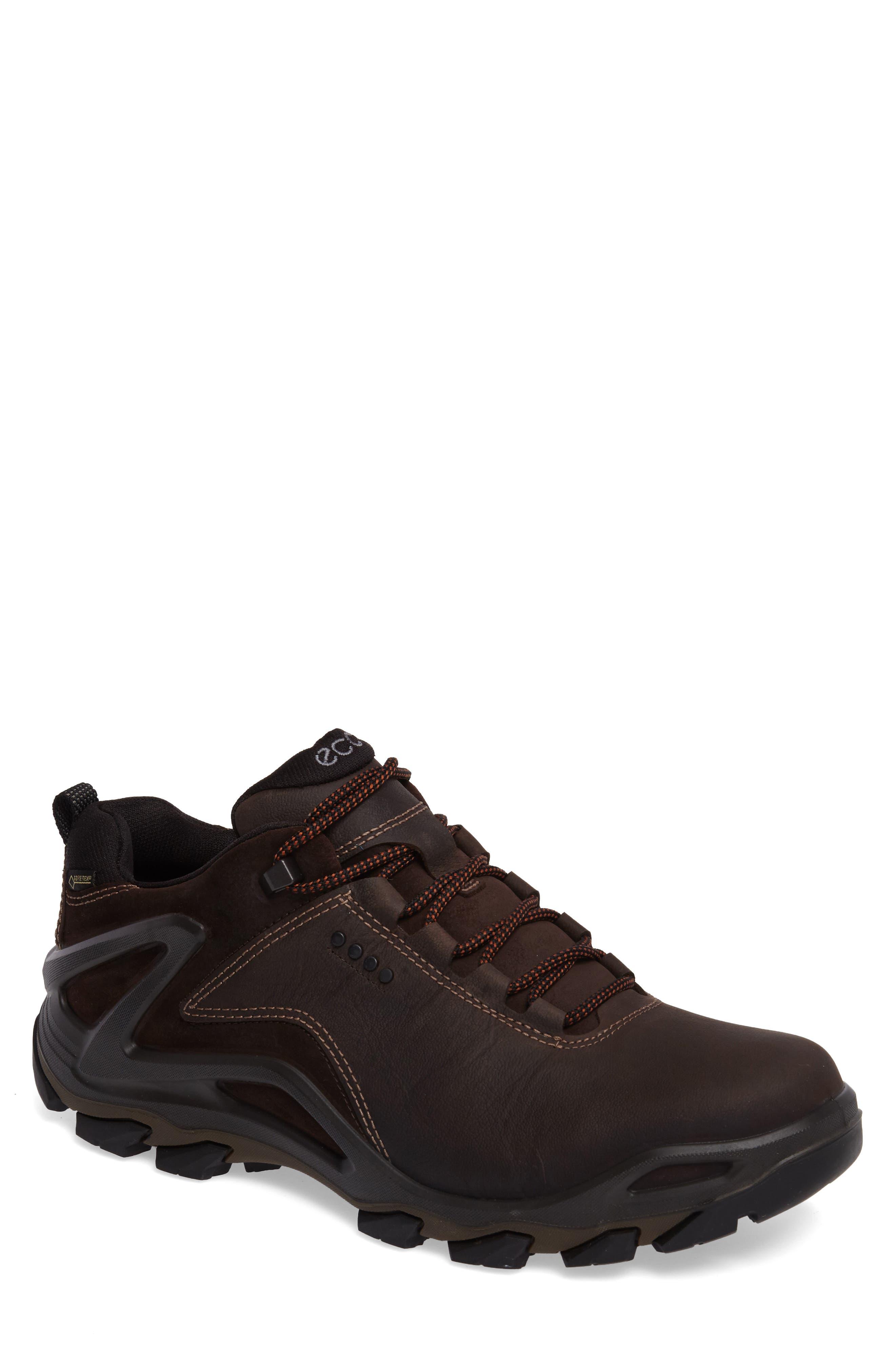 Terra Evo GTX Low Hiking Shoe,                             Main thumbnail 1, color,                             BLACK NUBUCK/ SUEDE
