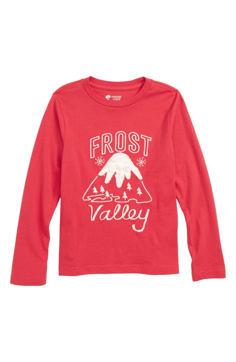 8d41c37337 Tucker + Tate Frost Valley Appliqué T-Shirt (Toddler Boys