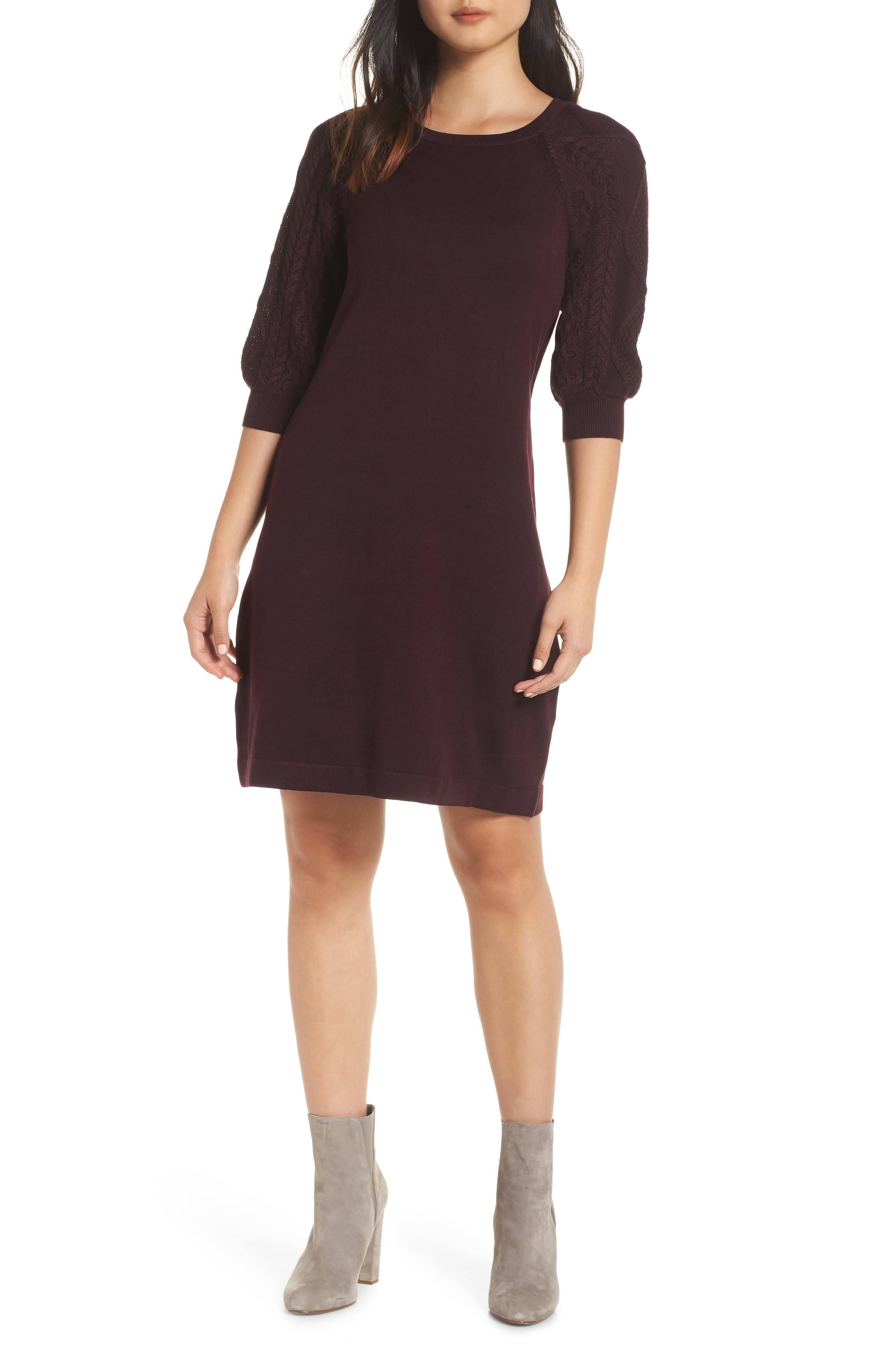 Eliza J Cable Sleeve Sweater Dress